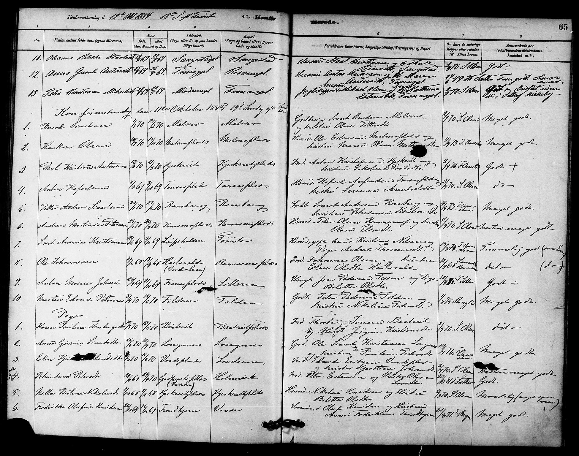 SAT, Ministerialprotokoller, klokkerbøker og fødselsregistre - Nord-Trøndelag, 745/L0429: Ministerialbok nr. 745A01, 1878-1894, s. 65