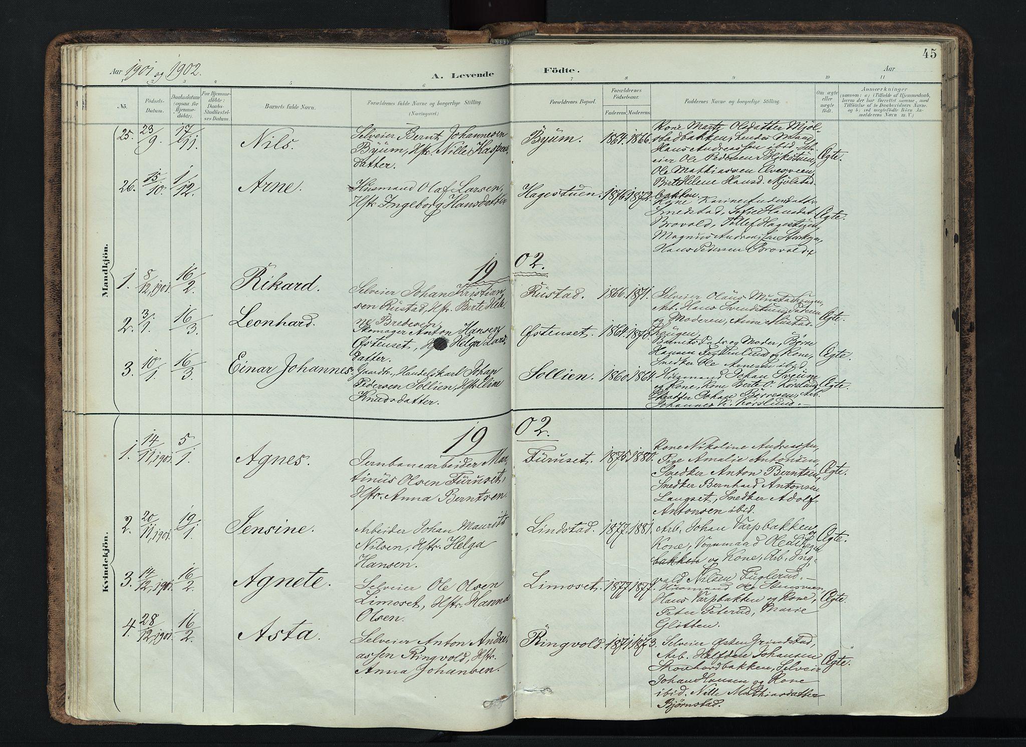 SAH, Vardal prestekontor, H/Ha/Haa/L0019: Ministerialbok nr. 19, 1893-1907, s. 45