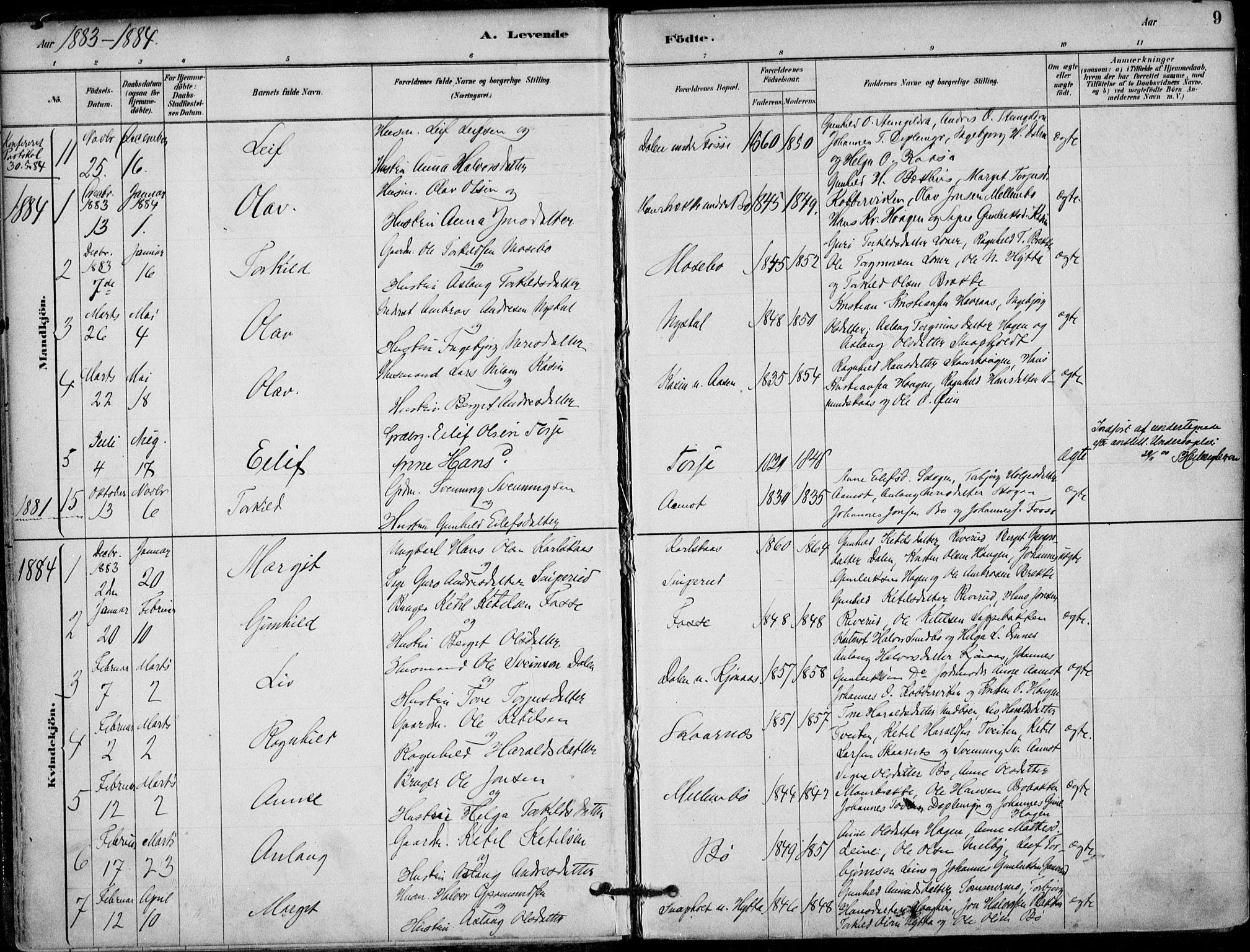 SAKO, Hjartdal kirkebøker, F/Fb/L0002: Ministerialbok nr. II 2, 1880-1932, s. 9