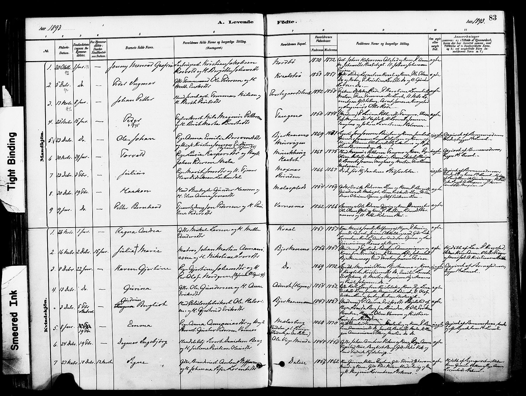 SAT, Ministerialprotokoller, klokkerbøker og fødselsregistre - Nord-Trøndelag, 709/L0077: Ministerialbok nr. 709A17, 1880-1895, s. 83