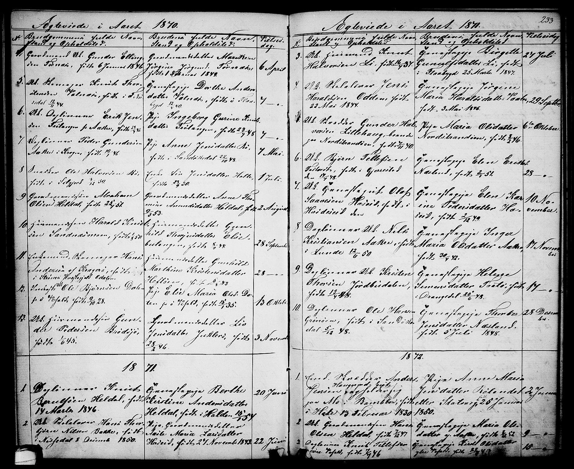 SAKO, Drangedal kirkebøker, G/Ga/L0002: Klokkerbok nr. I 2, 1856-1887, s. 233