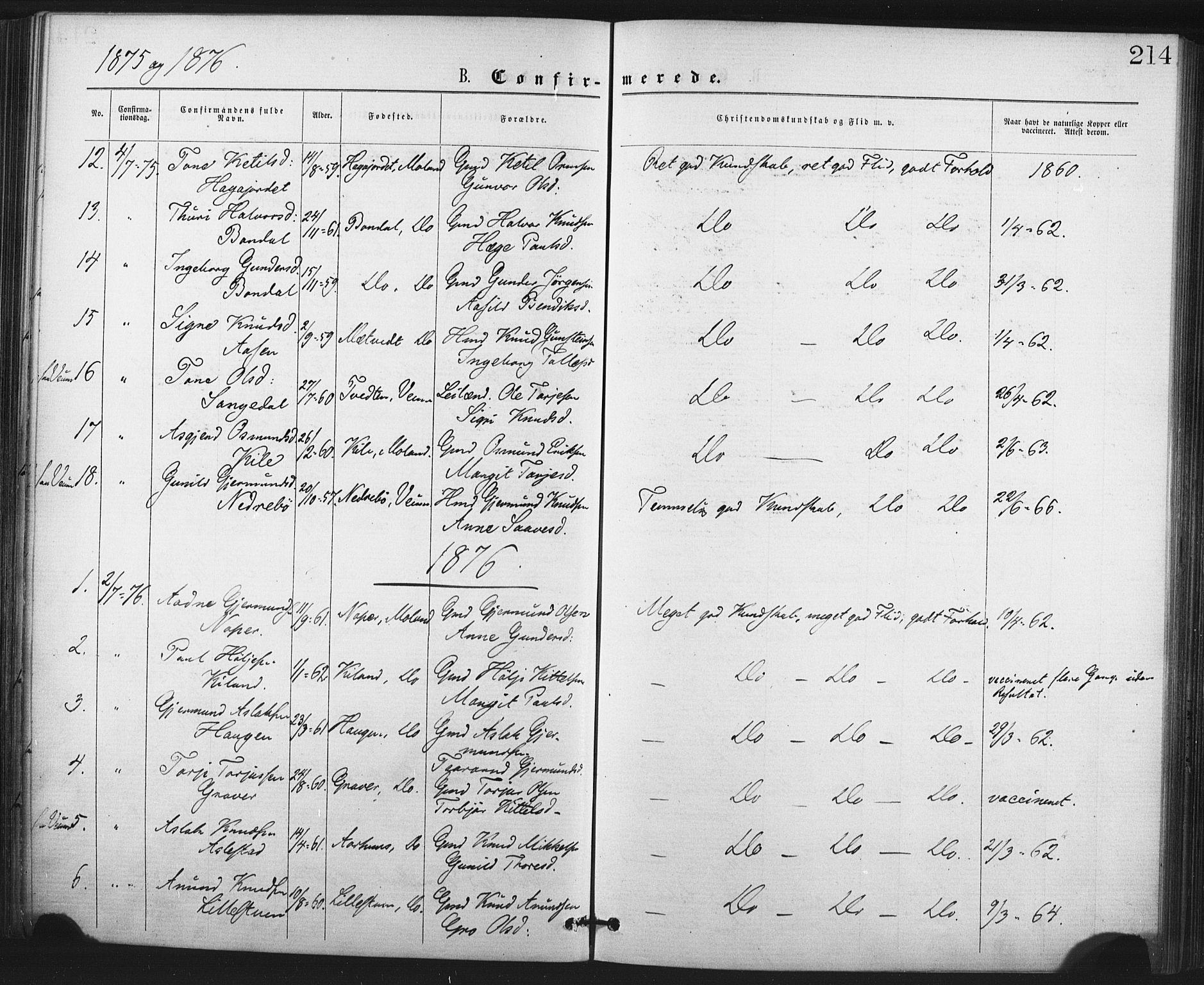 SAKO, Fyresdal kirkebøker, F/Fa/L0006: Ministerialbok nr. I 6, 1872-1886, s. 214