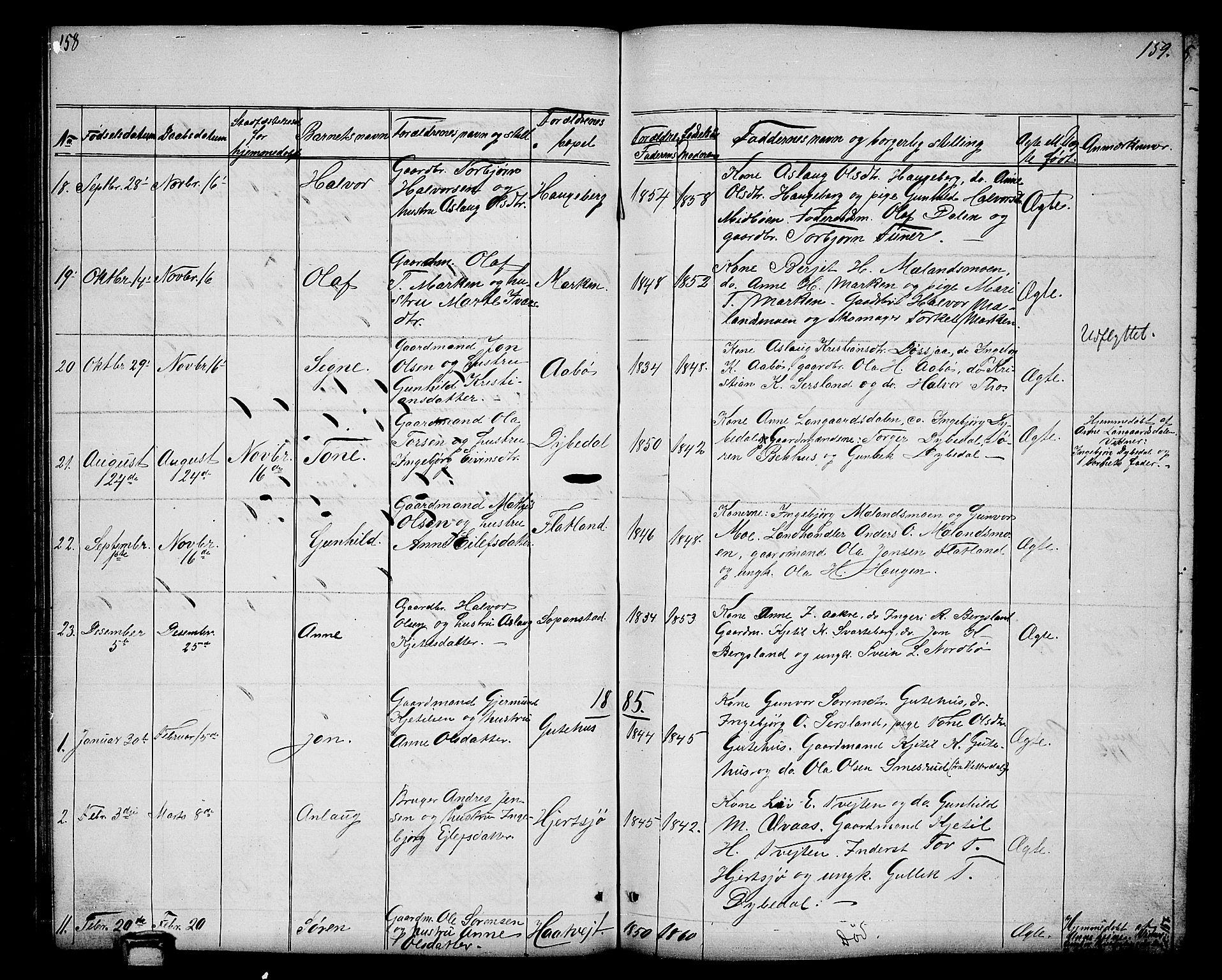 SAKO, Hjartdal kirkebøker, G/Ga/L0002: Klokkerbok nr. I 2, 1854-1888, s. 158-159