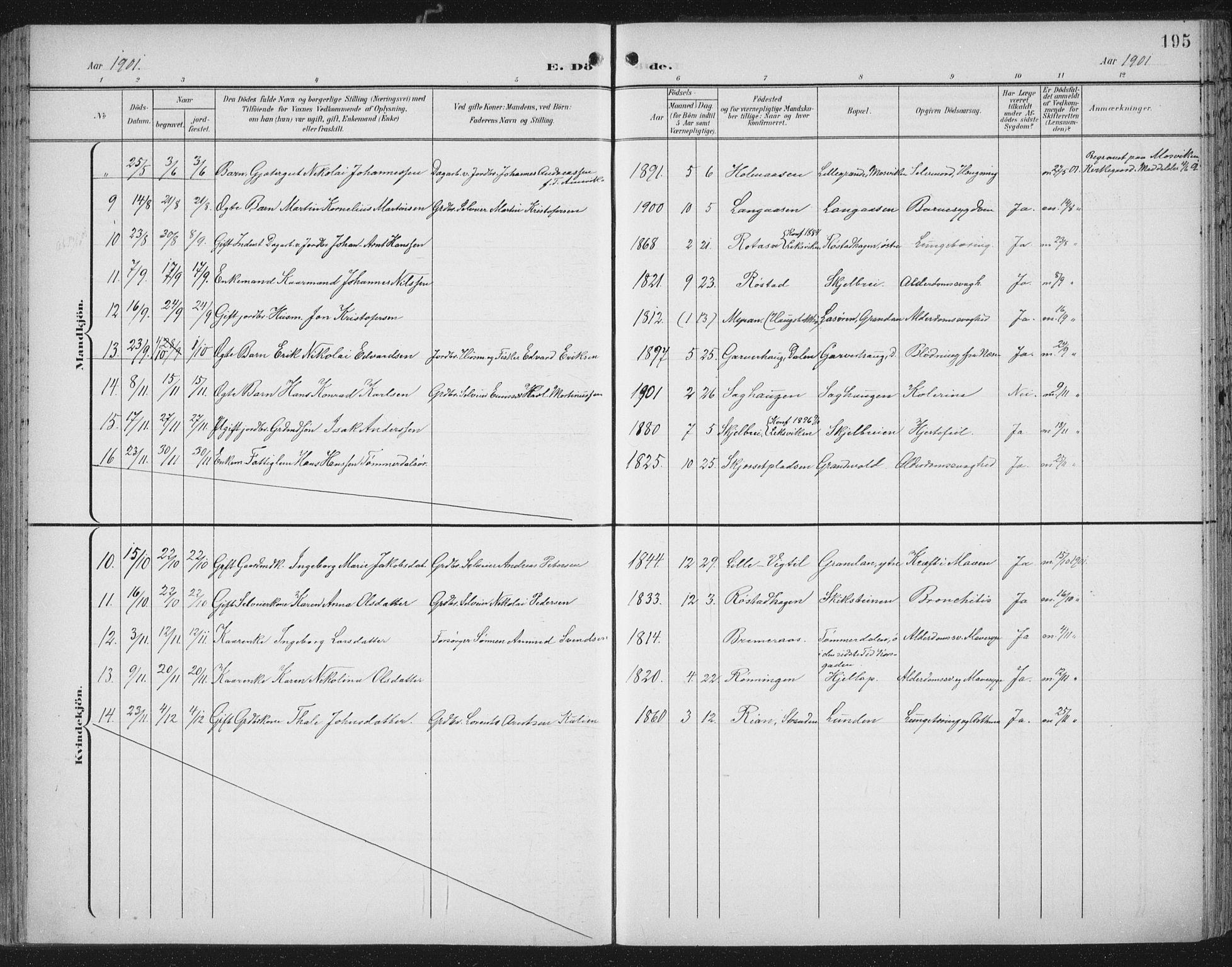 SAT, Ministerialprotokoller, klokkerbøker og fødselsregistre - Nord-Trøndelag, 701/L0011: Ministerialbok nr. 701A11, 1899-1915, s. 195