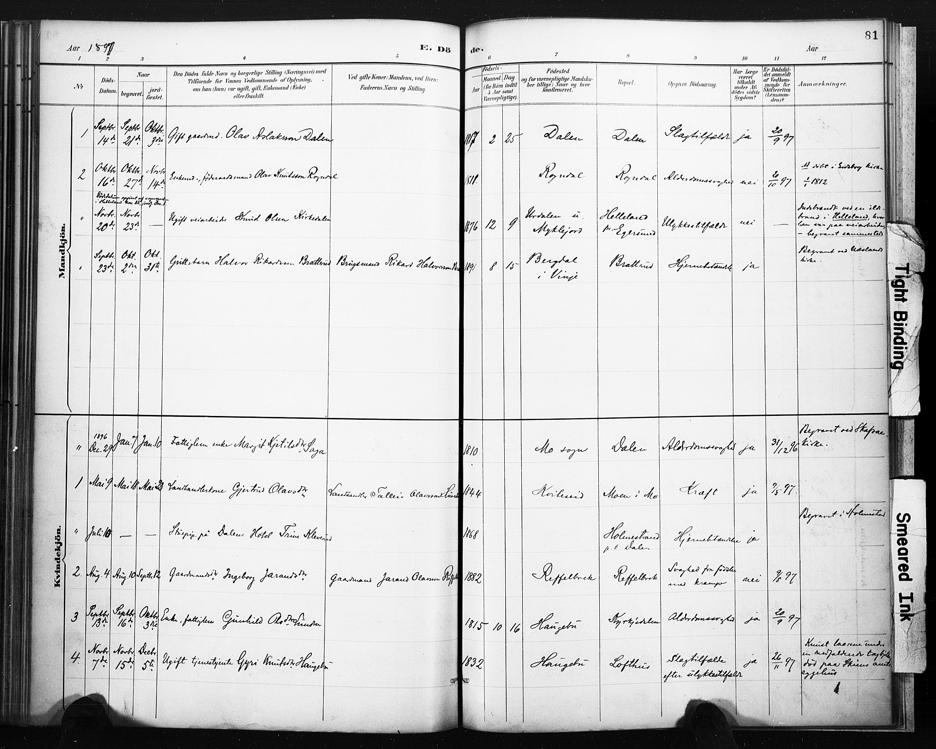 SAKO, Lårdal kirkebøker, F/Fb/L0002: Ministerialbok nr. II 2, 1887-1918, s. 81