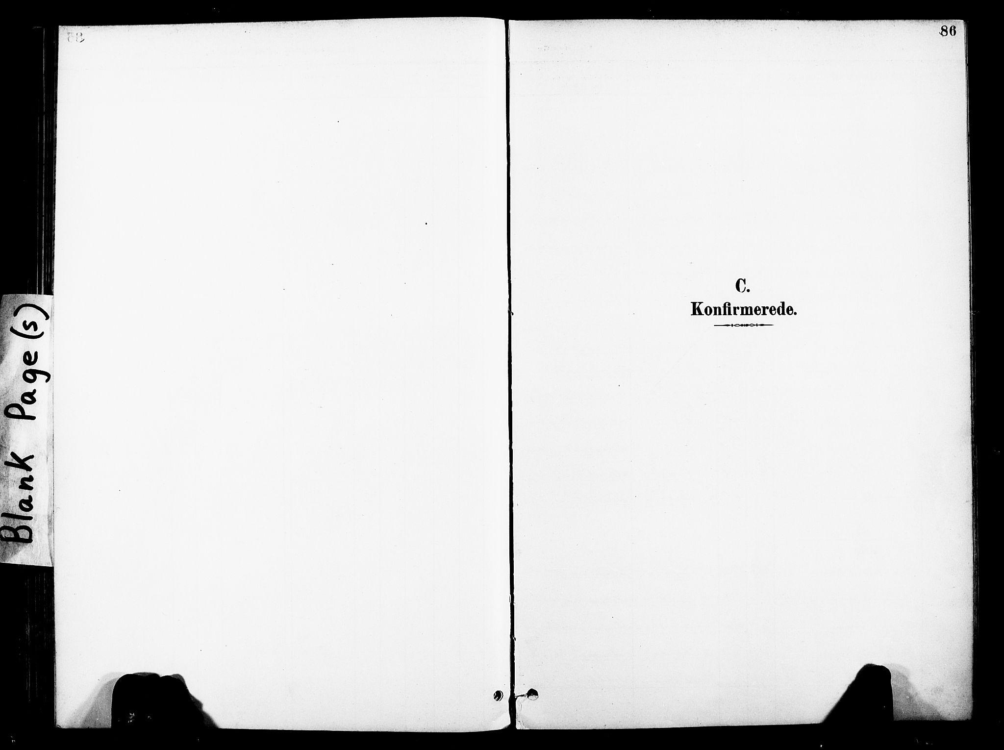 SAT, Ministerialprotokoller, klokkerbøker og fødselsregistre - Nord-Trøndelag, 739/L0372: Ministerialbok nr. 739A04, 1895-1903, s. 86