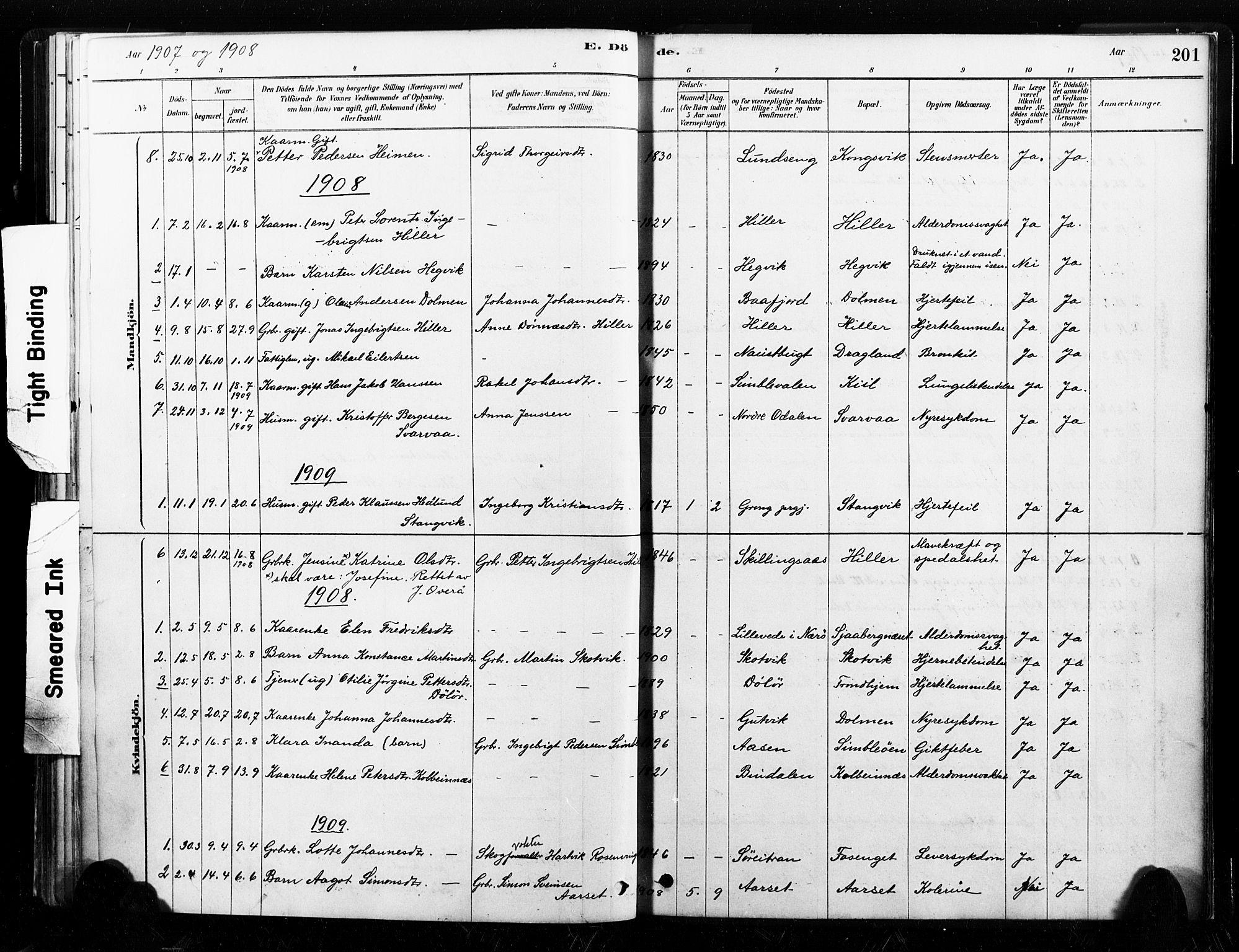 SAT, Ministerialprotokoller, klokkerbøker og fødselsregistre - Nord-Trøndelag, 789/L0705: Ministerialbok nr. 789A01, 1878-1910, s. 201