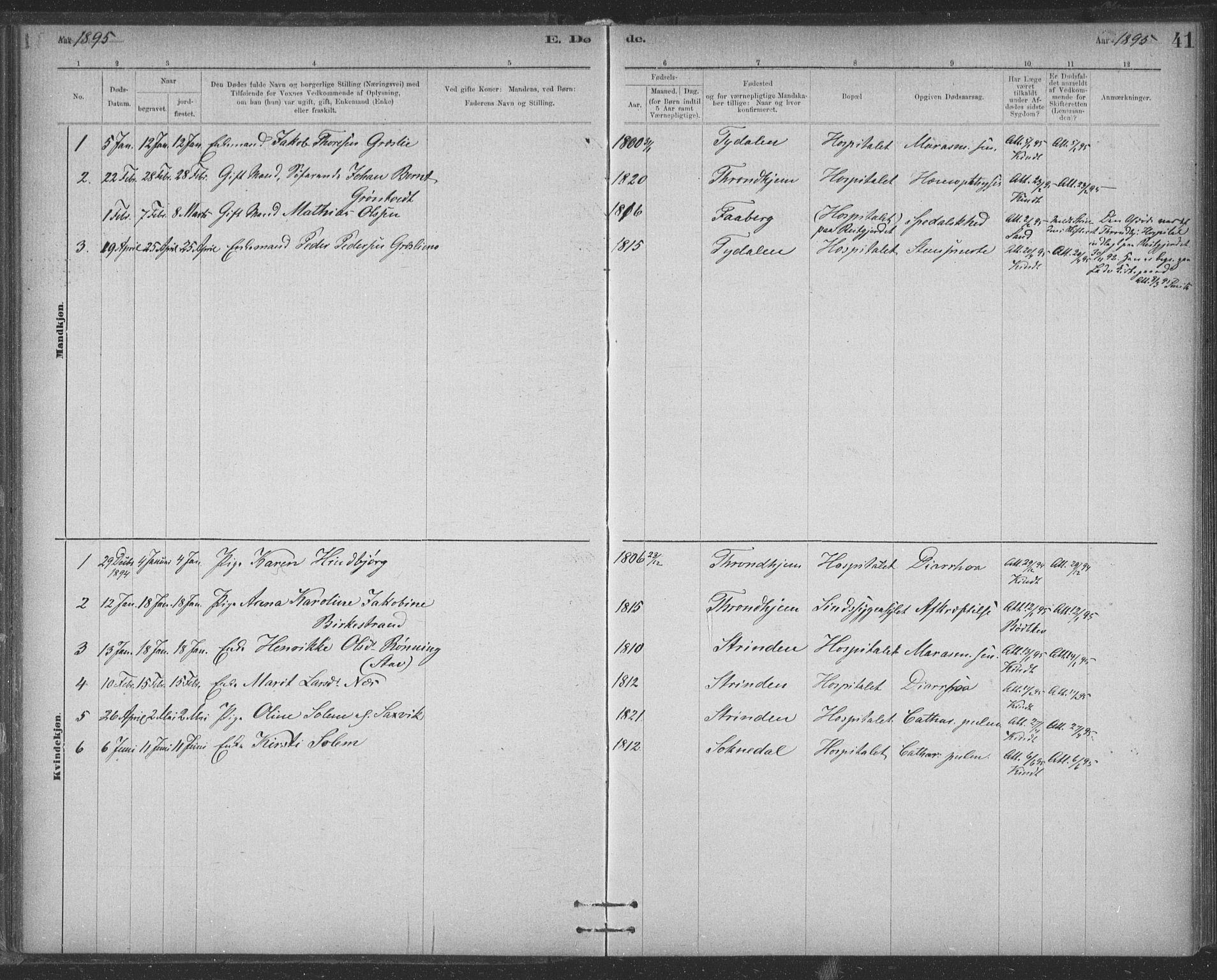 SAT, Ministerialprotokoller, klokkerbøker og fødselsregistre - Sør-Trøndelag, 623/L0470: Ministerialbok nr. 623A04, 1884-1938, s. 41