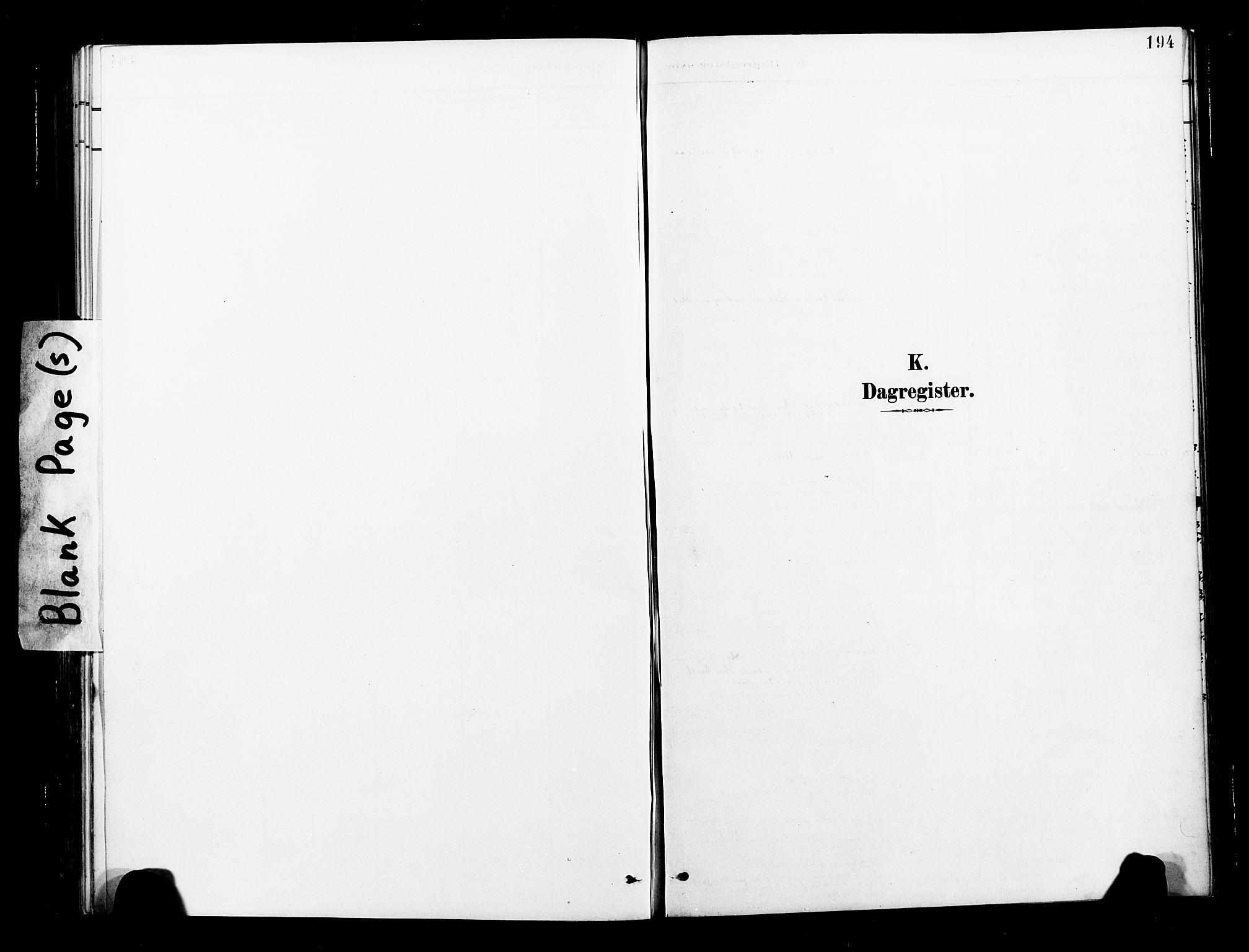 SAT, Ministerialprotokoller, klokkerbøker og fødselsregistre - Nord-Trøndelag, 713/L0121: Ministerialbok nr. 713A10, 1888-1898, s. 194