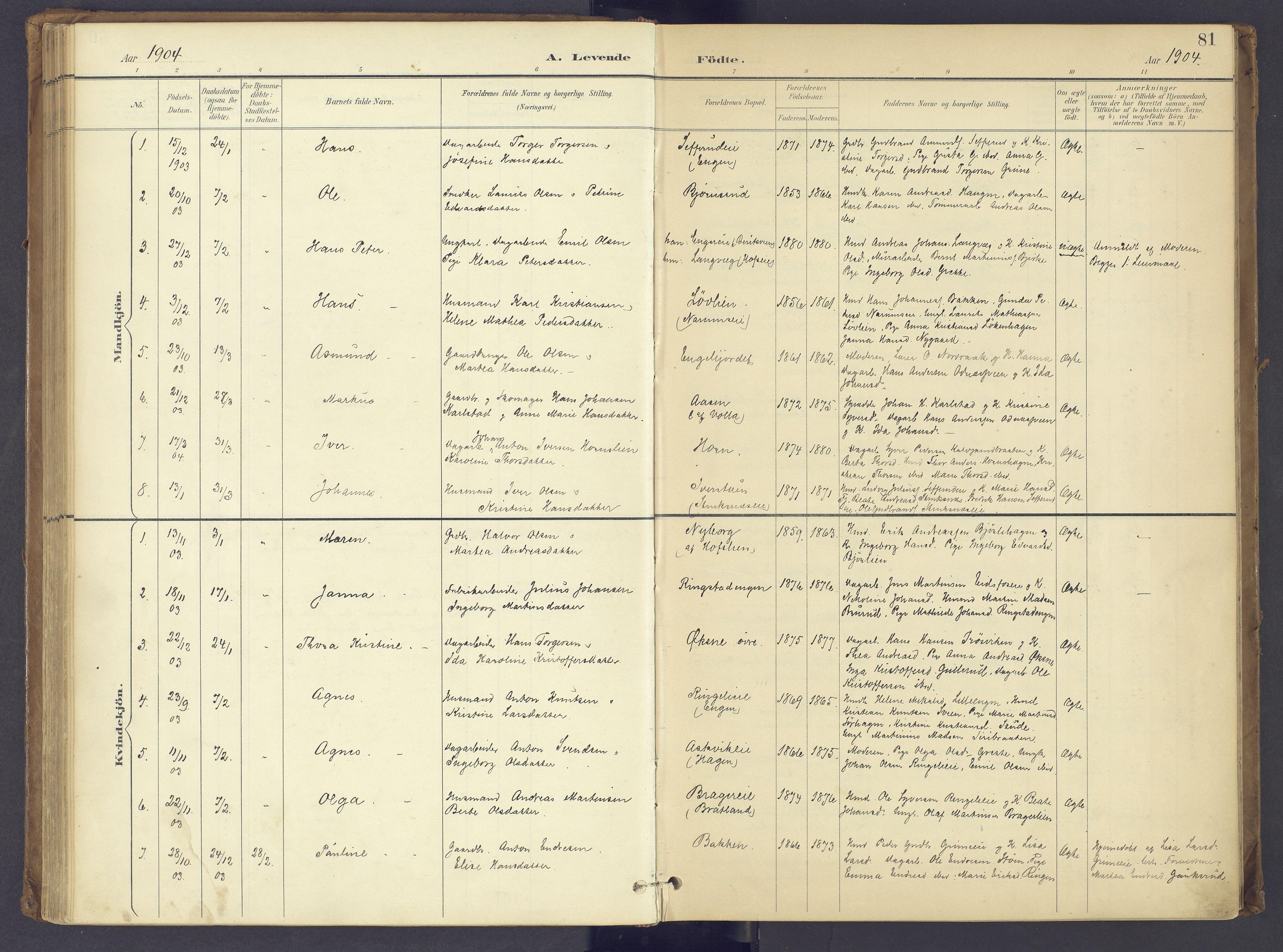 SAH, Søndre Land prestekontor, K/L0006: Ministerialbok nr. 6, 1895-1904, s. 81