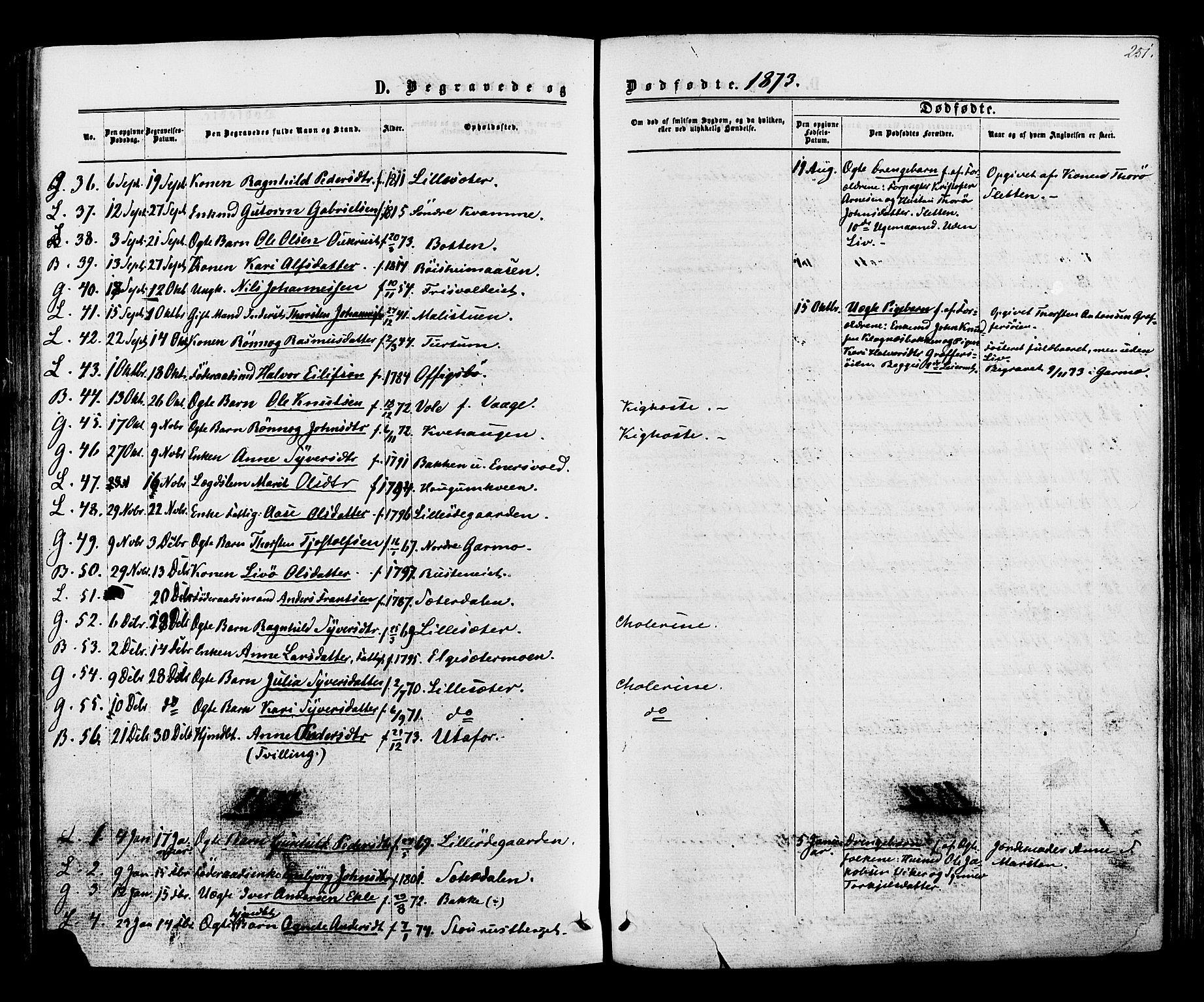 SAH, Lom prestekontor, K/L0007: Ministerialbok nr. 7, 1863-1884, s. 251