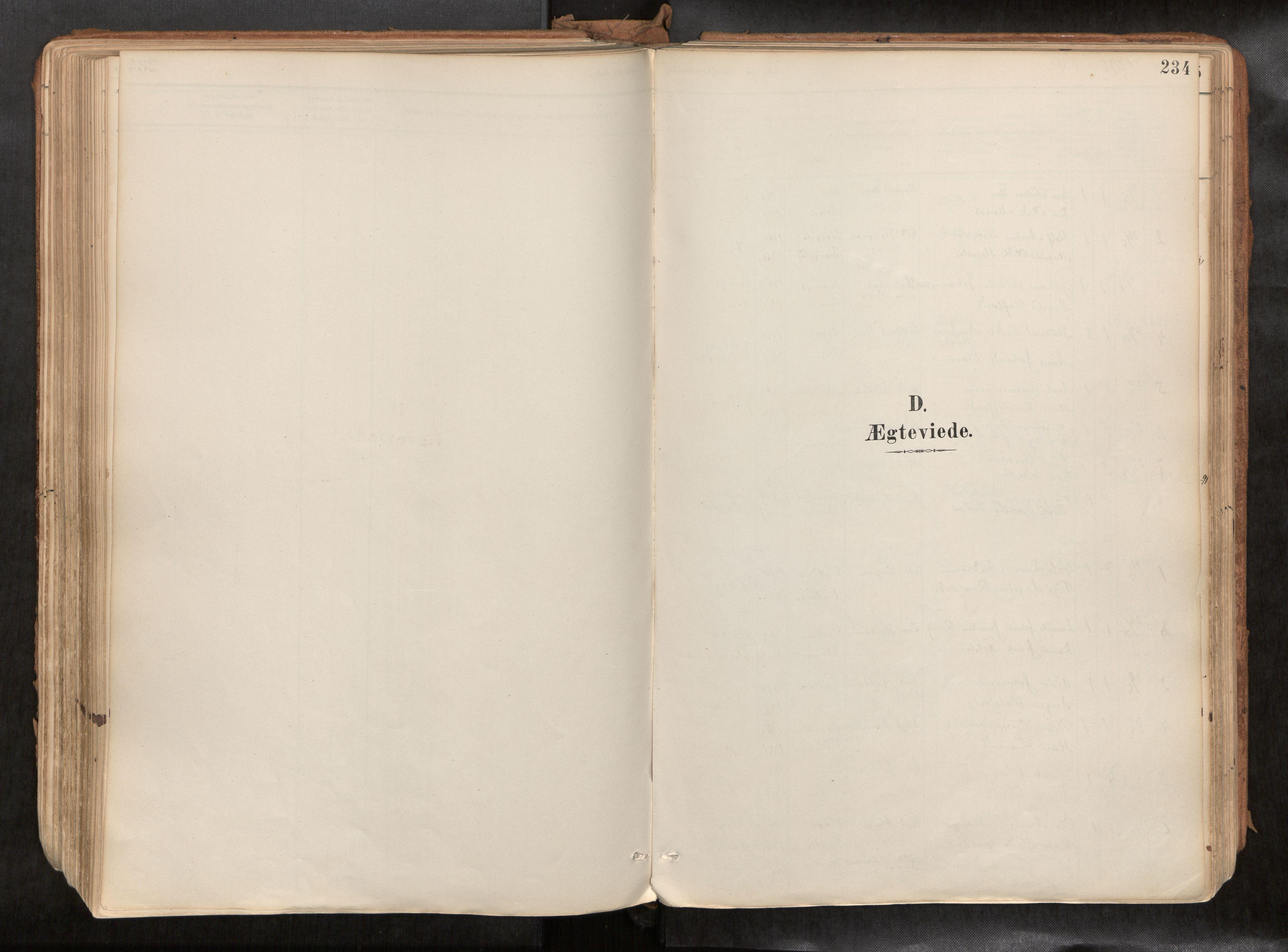 SAT, Ministerialprotokoller, klokkerbøker og fødselsregistre - Sør-Trøndelag, 692/L1105b: Ministerialbok nr. 692A06, 1891-1934, s. 234