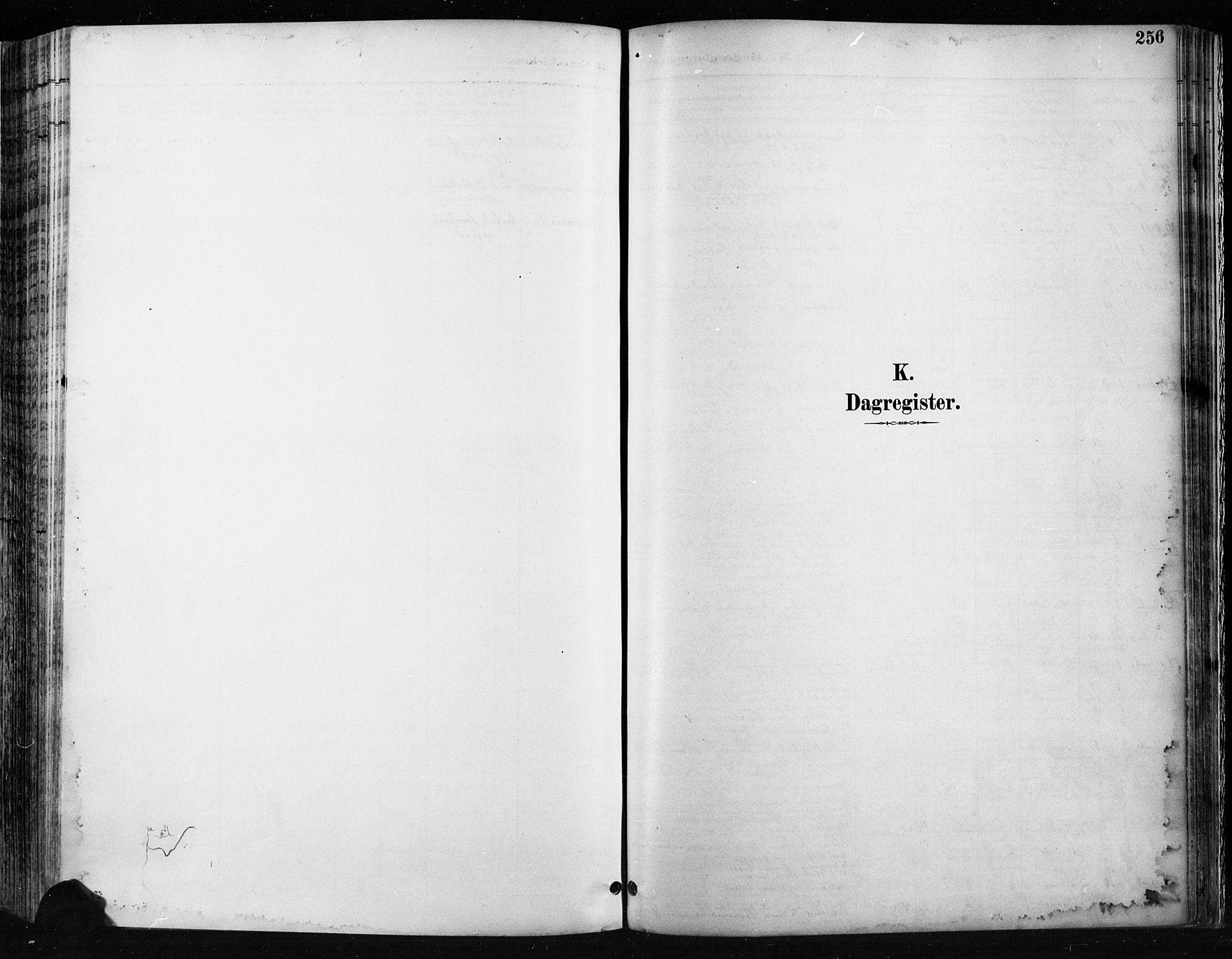 SAH, Jevnaker prestekontor, Ministerialbok nr. 9, 1891-1901, s. 256