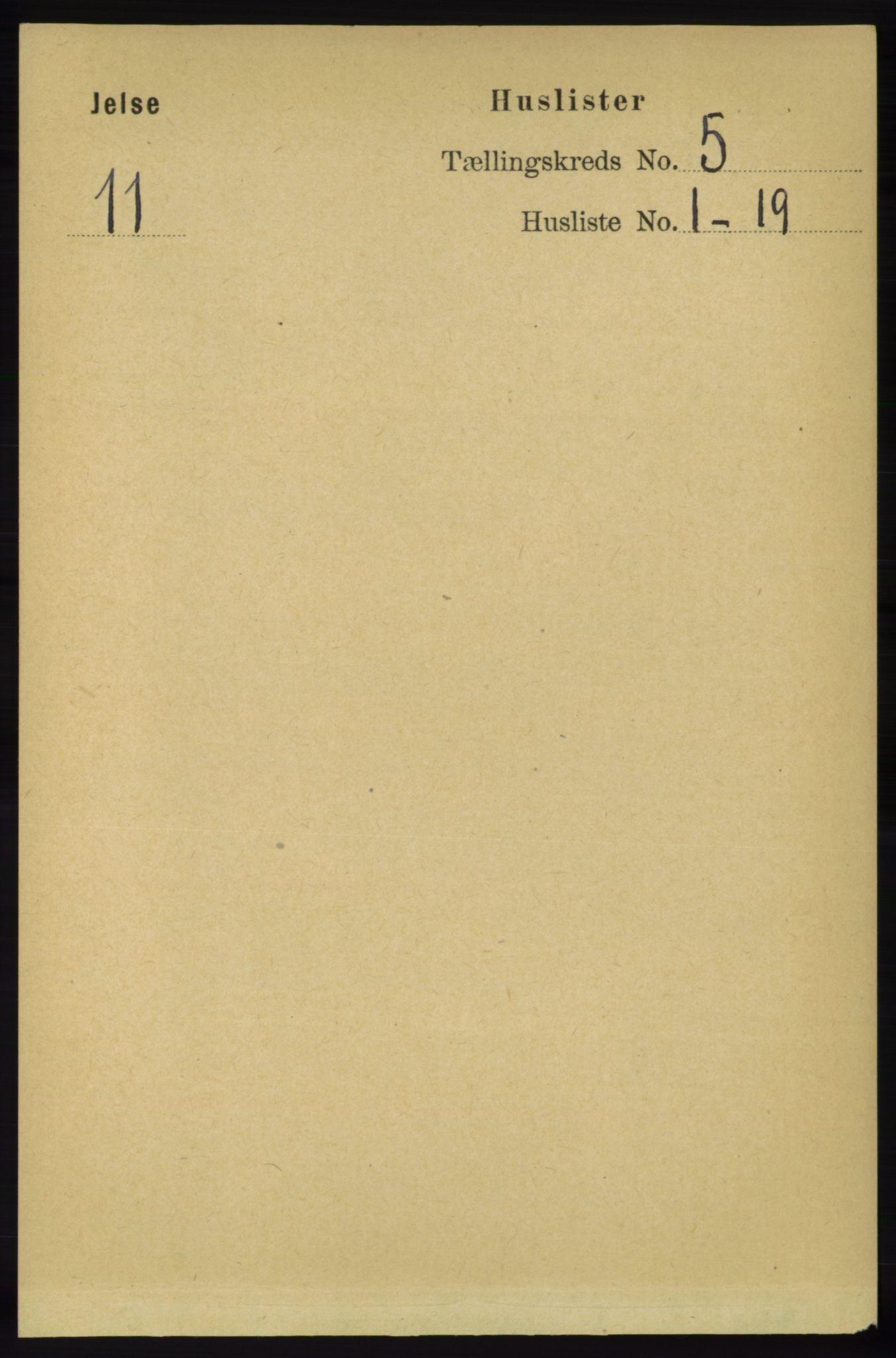 RA, Folketelling 1891 for 1138 Jelsa herred, 1891, s. 1041
