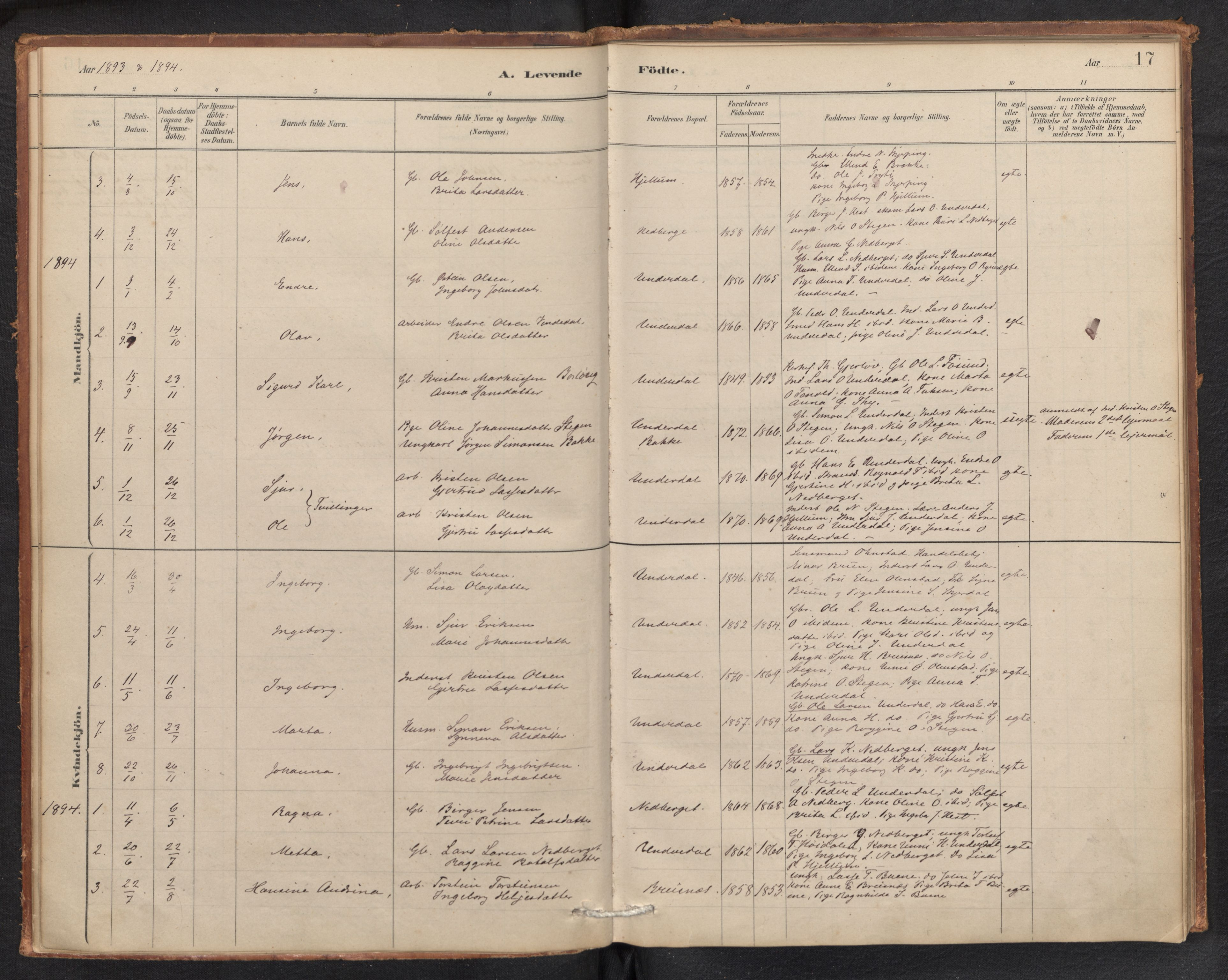 SAB, Aurland sokneprestembete, H/Ha/Hae/L0001: Ministerialbok nr. E 1, 1880-1907, s. 16b-17a