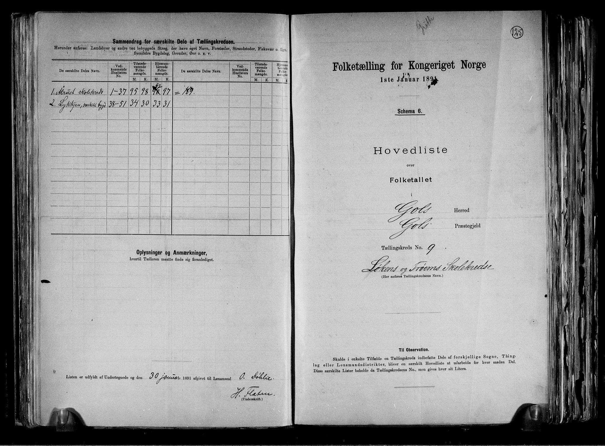 RA, Folketelling 1891 for 0617 Gol og Hemsedal herred, 1891, s. 20