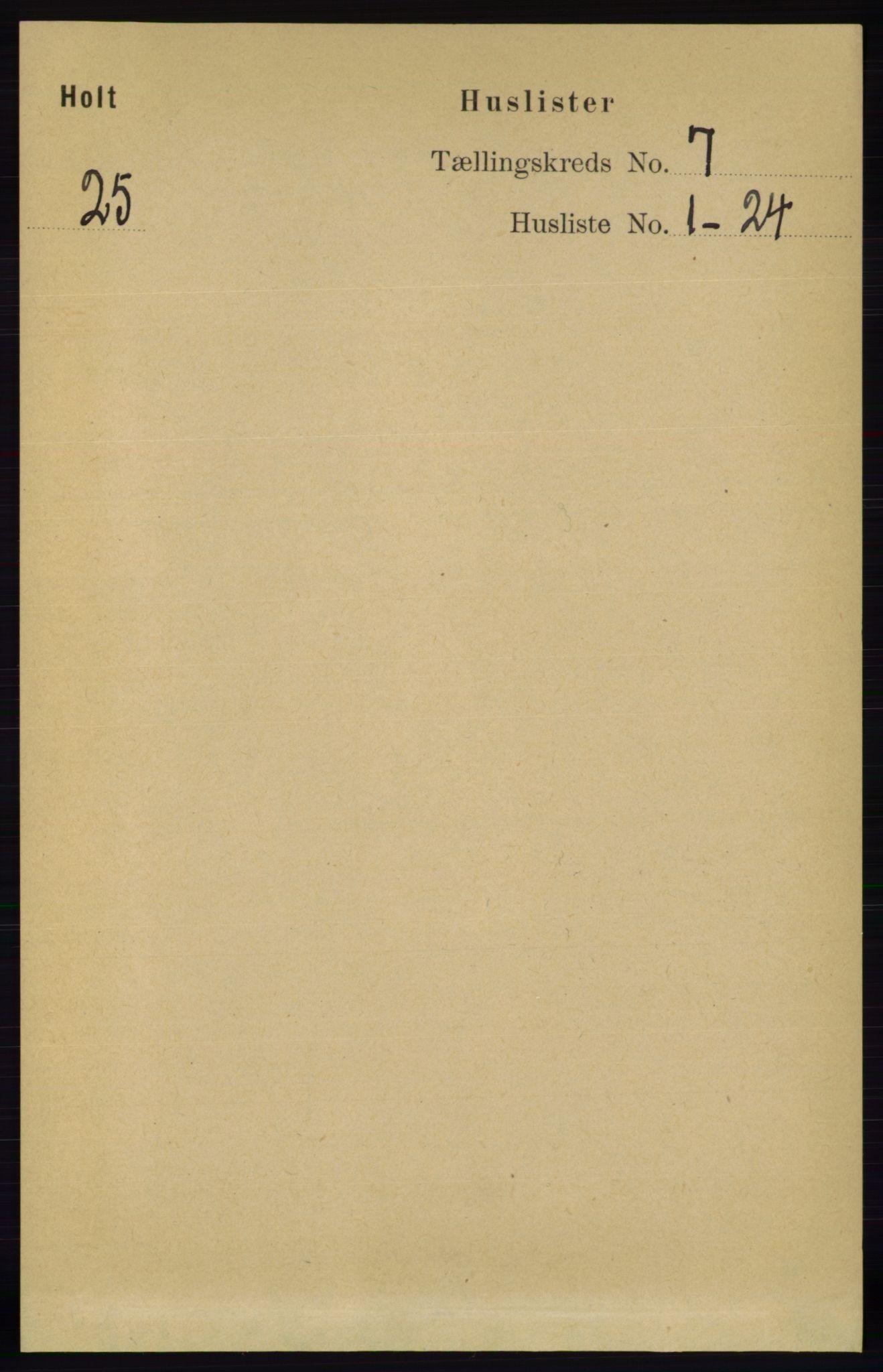 RA, Folketelling 1891 for 0914 Holt herred, 1891, s. 3294
