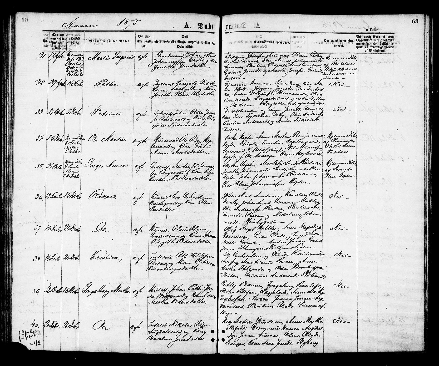 SAT, Ministerialprotokoller, klokkerbøker og fødselsregistre - Nord-Trøndelag, 713/L0118: Ministerialbok nr. 713A08 /2, 1875-1877, s. 63