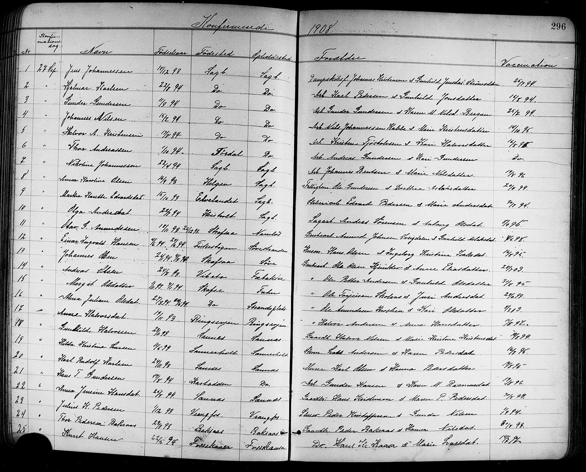 SAKO, Holla kirkebøker, G/Ga/L0005: Klokkerbok nr. I 5, 1891-1917, s. 296