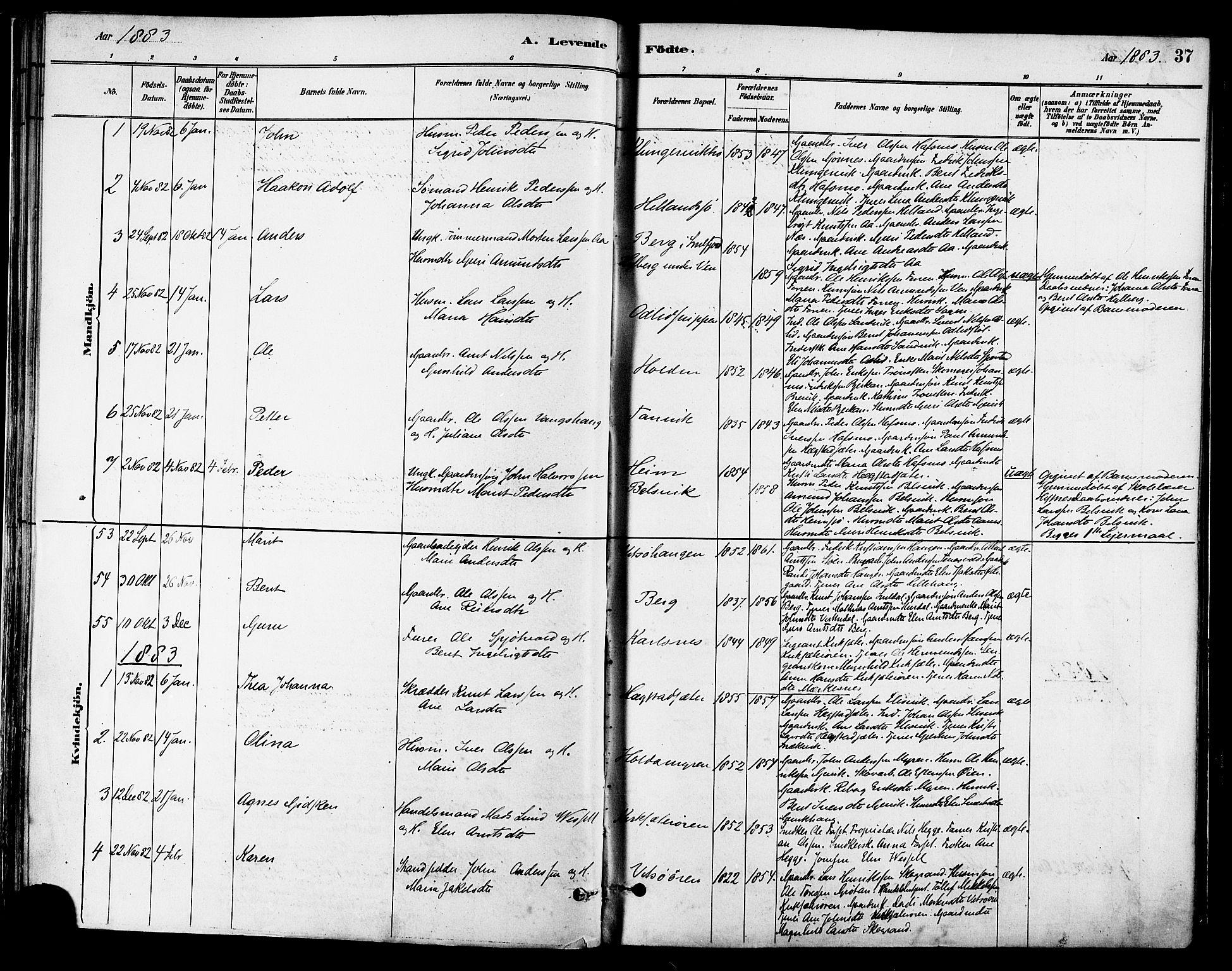 SAT, Ministerialprotokoller, klokkerbøker og fødselsregistre - Sør-Trøndelag, 630/L0496: Ministerialbok nr. 630A09, 1879-1895, s. 37