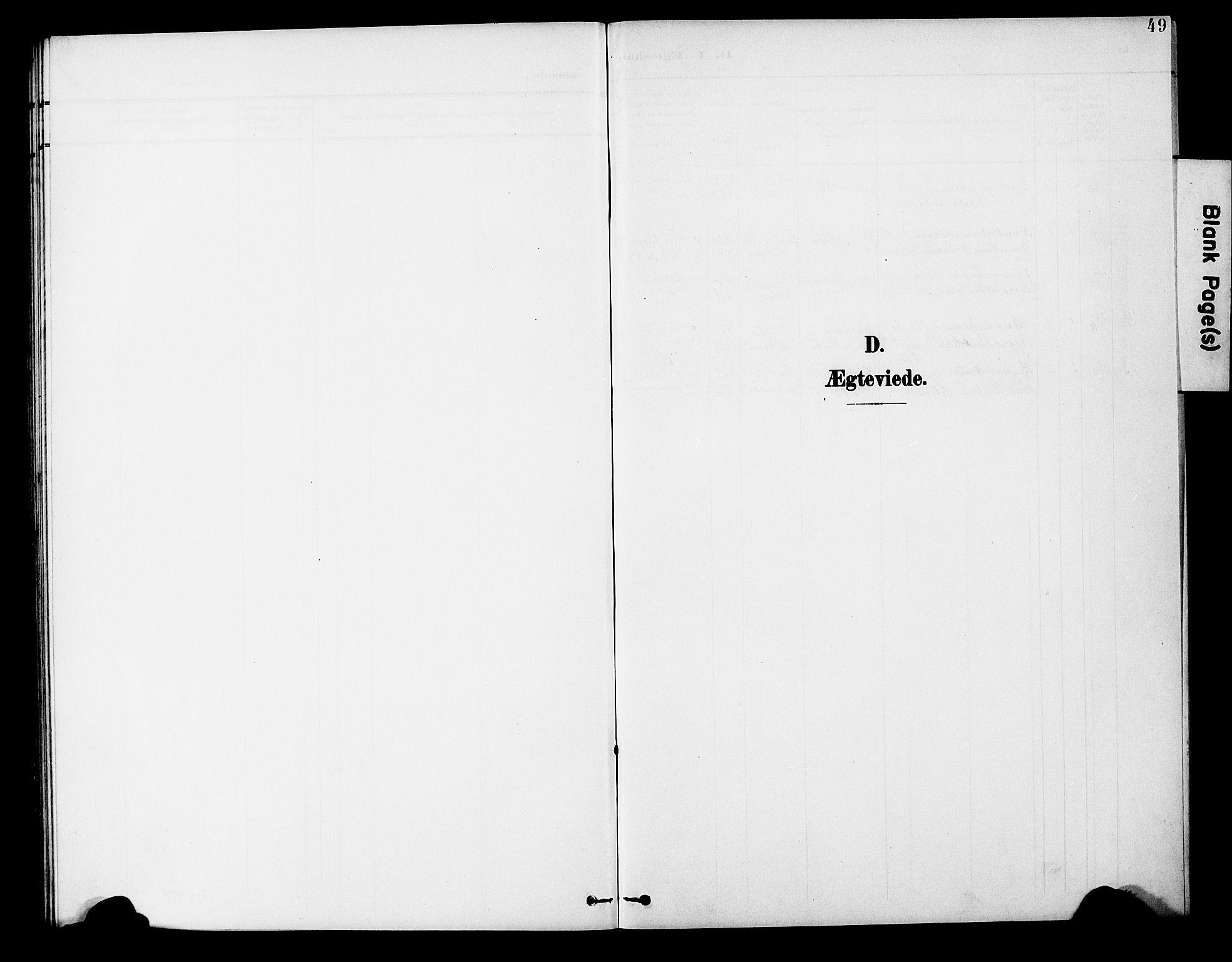 SAT, Ministerialprotokoller, klokkerbøker og fødselsregistre - Nord-Trøndelag, 746/L0452: Ministerialbok nr. 746A09, 1900-1908, s. 49