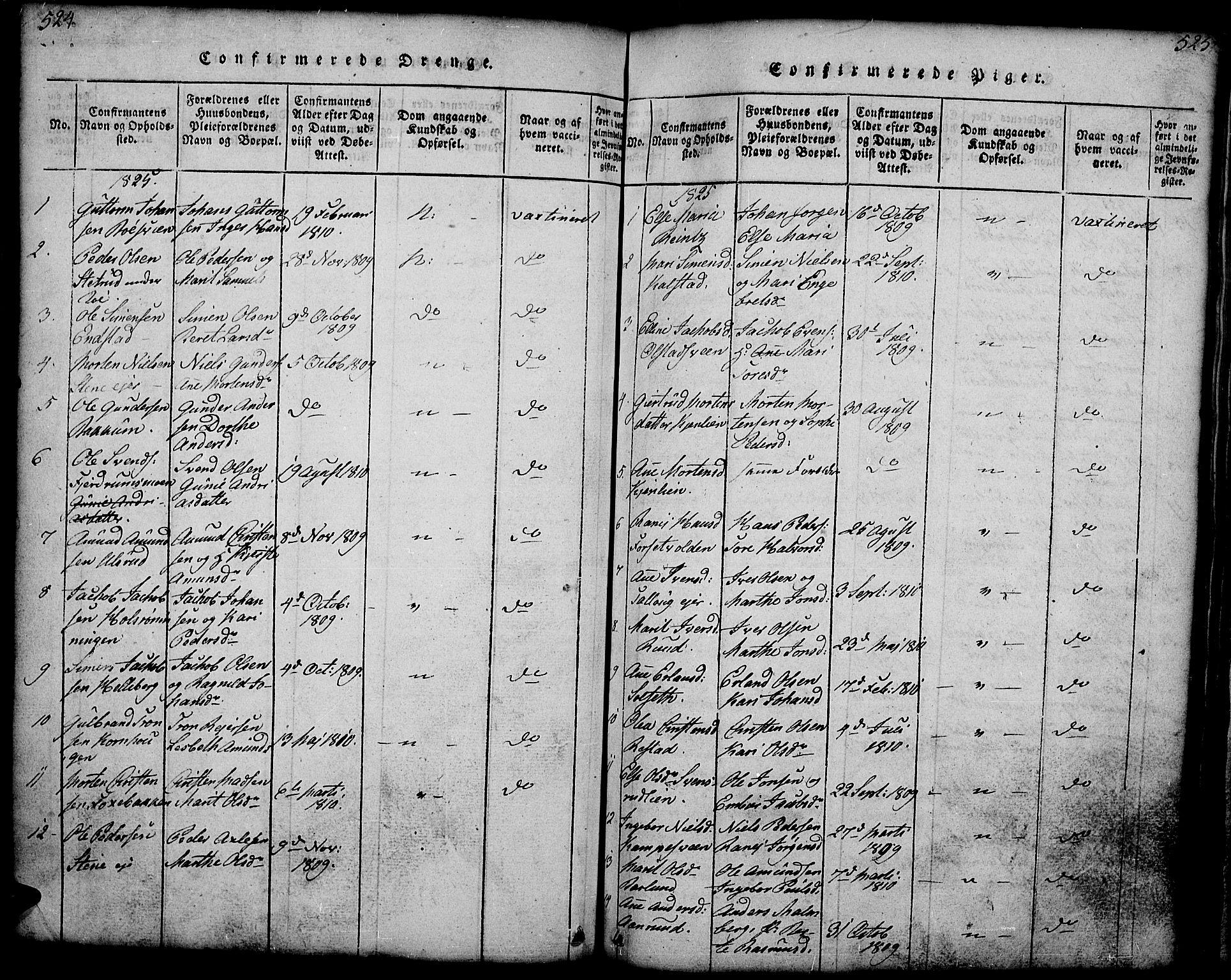 SAH, Gausdal prestekontor, Klokkerbok nr. 1, 1817-1848, s. 524-525