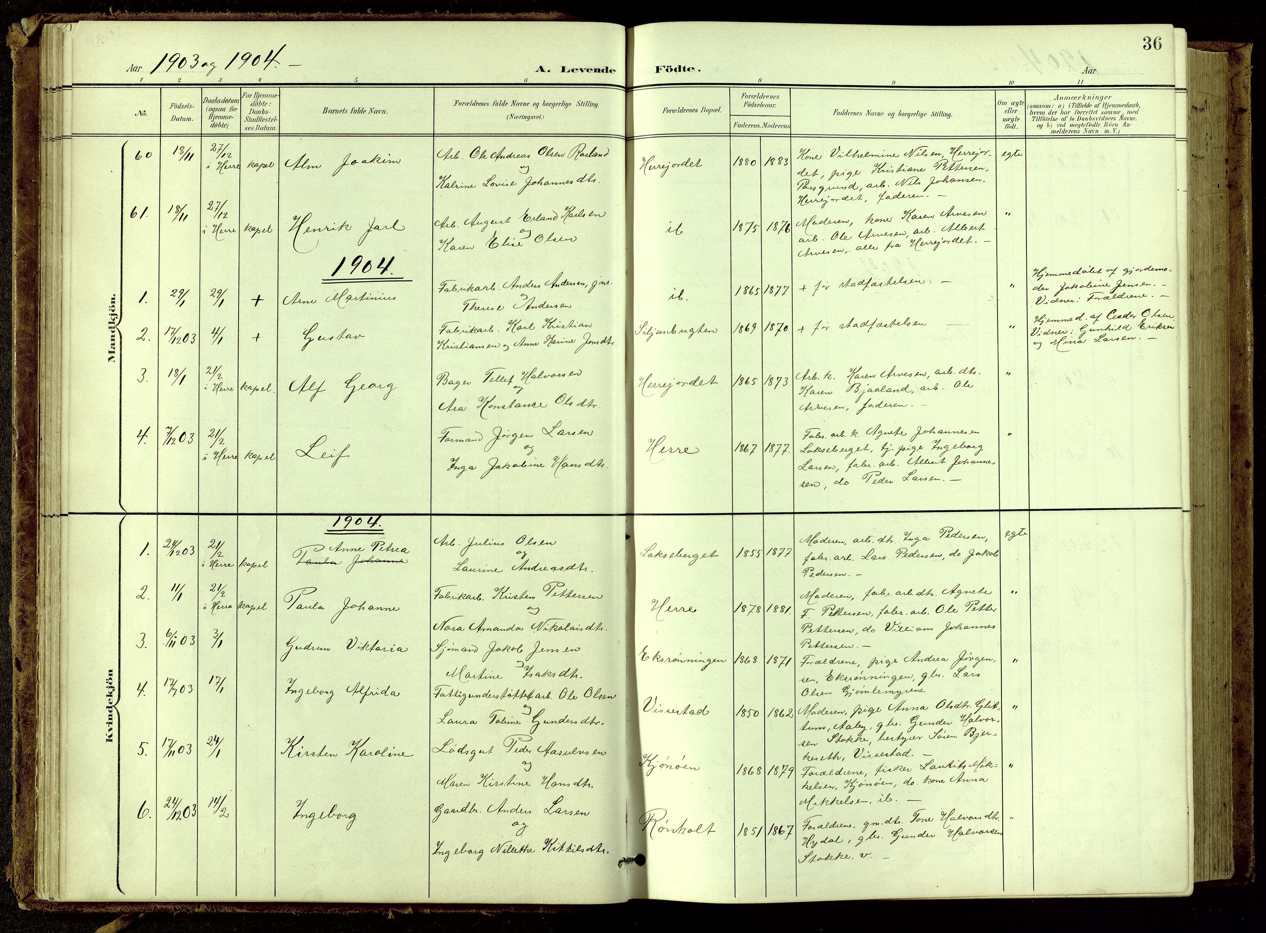 SAKO, Bamble kirkebøker, G/Ga/L0010: Klokkerbok nr. I 10, 1901-1919, s. 36