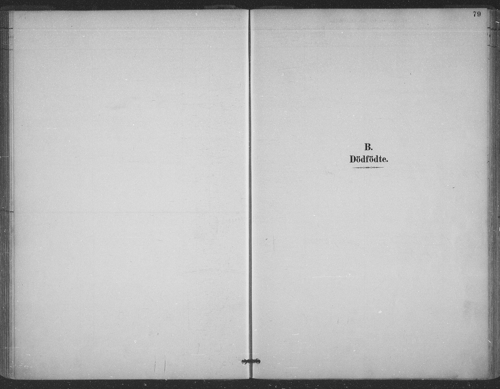 SATØ, Vadsø sokneprestkontor, H/Ha/L0006kirke: Ministerialbok nr. 6, 1885-1895, s. 79