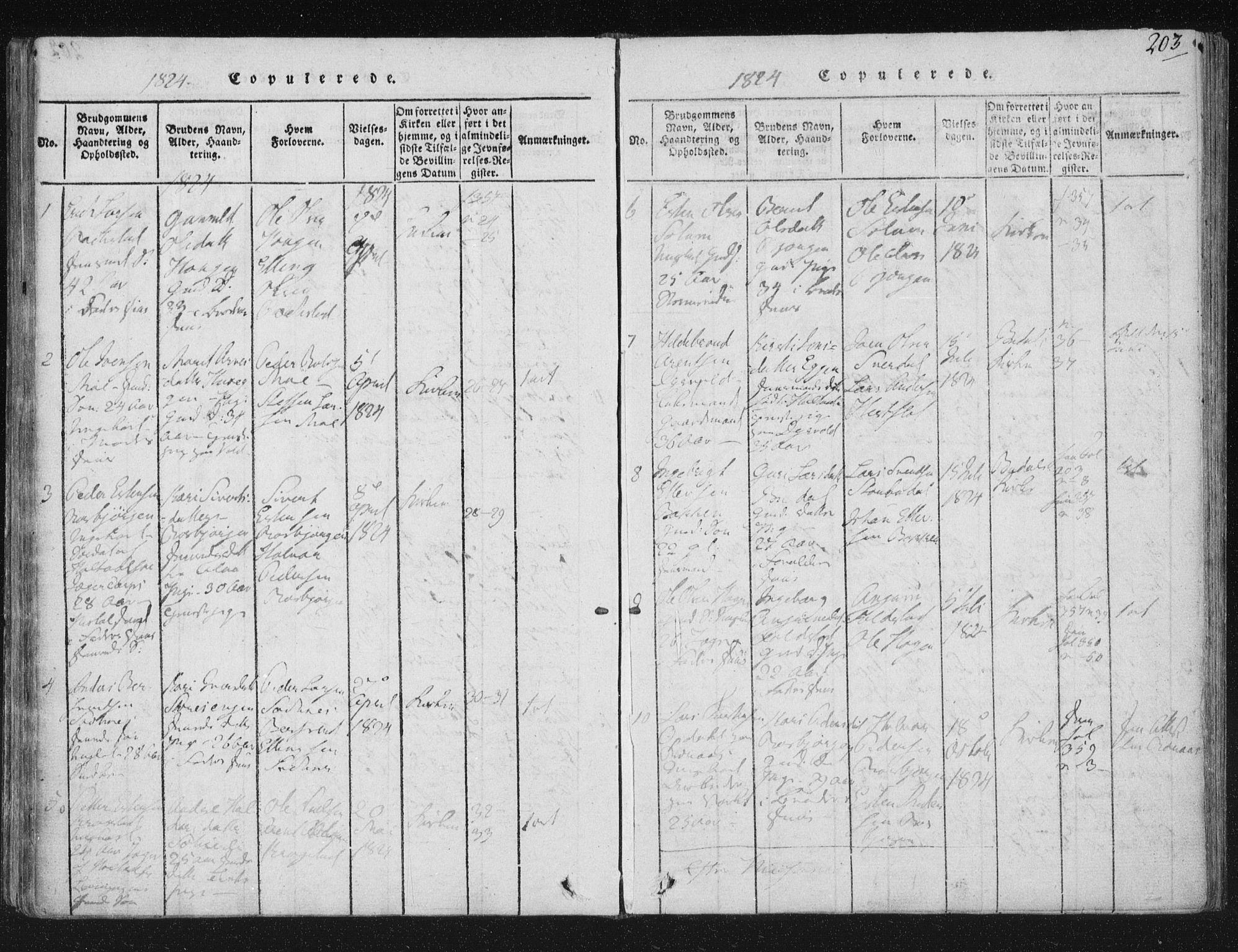 SAT, Ministerialprotokoller, klokkerbøker og fødselsregistre - Sør-Trøndelag, 687/L0996: Ministerialbok nr. 687A04, 1816-1842, s. 203