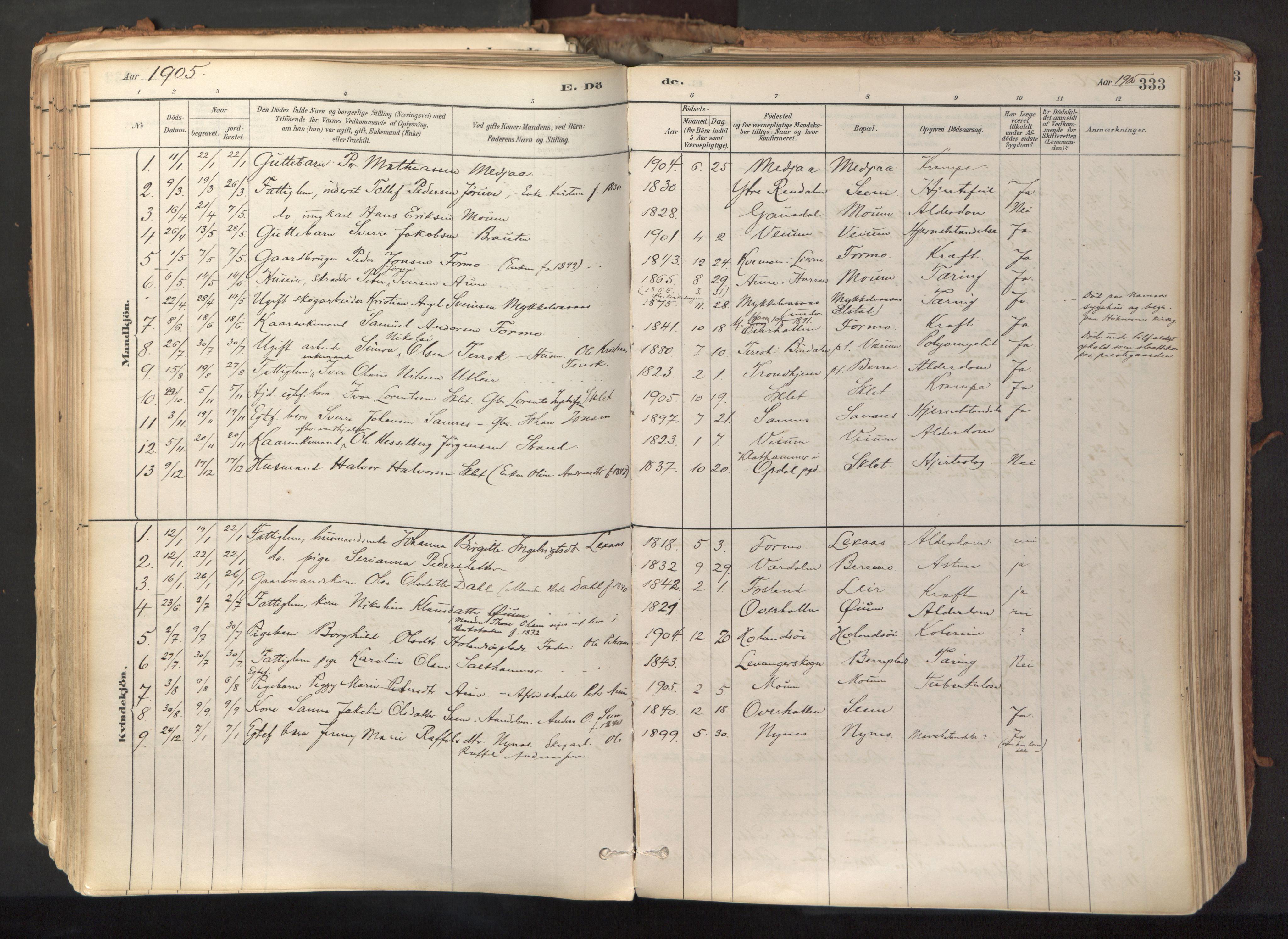 SAT, Ministerialprotokoller, klokkerbøker og fødselsregistre - Nord-Trøndelag, 758/L0519: Ministerialbok nr. 758A04, 1880-1926, s. 333