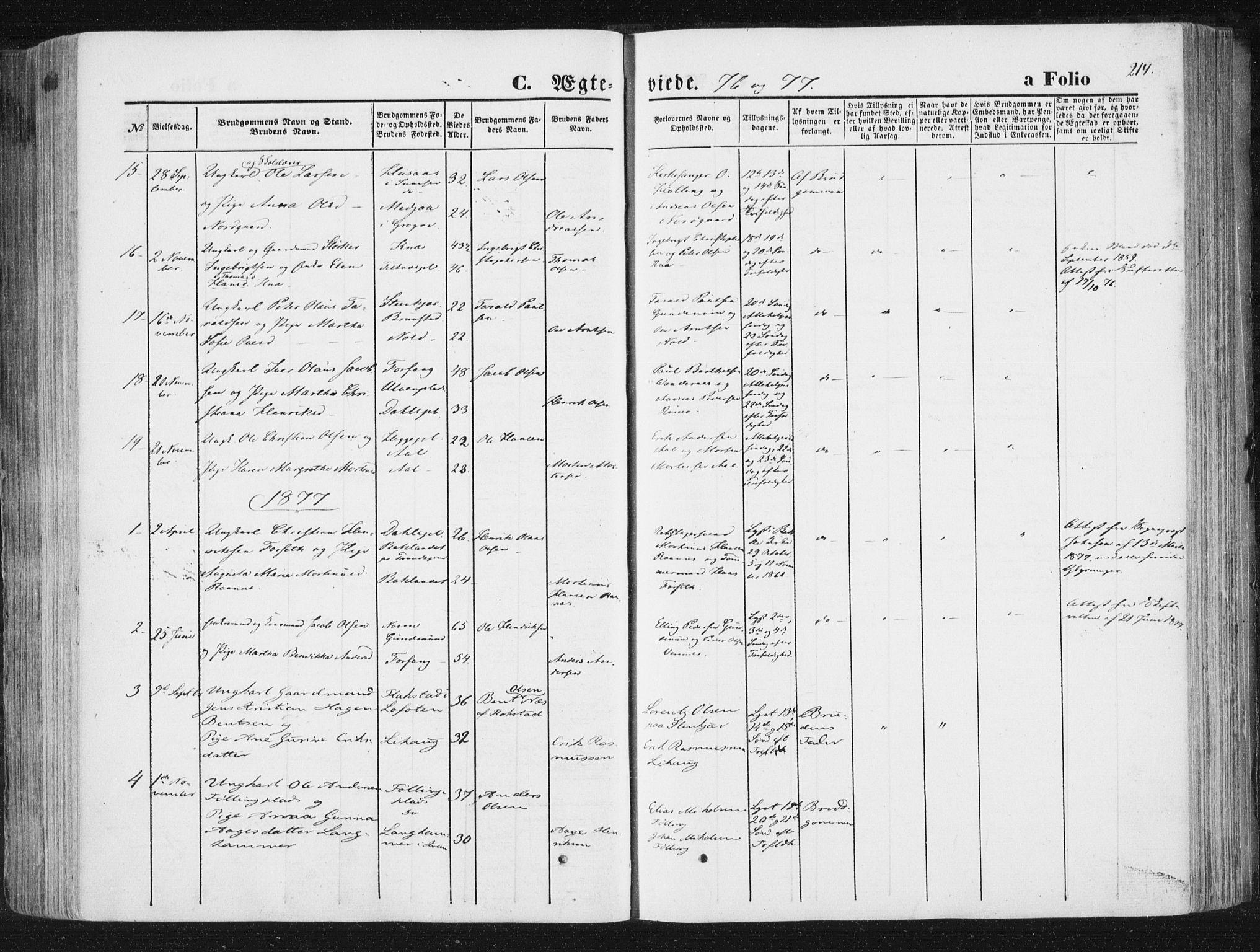SAT, Ministerialprotokoller, klokkerbøker og fødselsregistre - Nord-Trøndelag, 746/L0447: Ministerialbok nr. 746A06, 1860-1877, s. 214