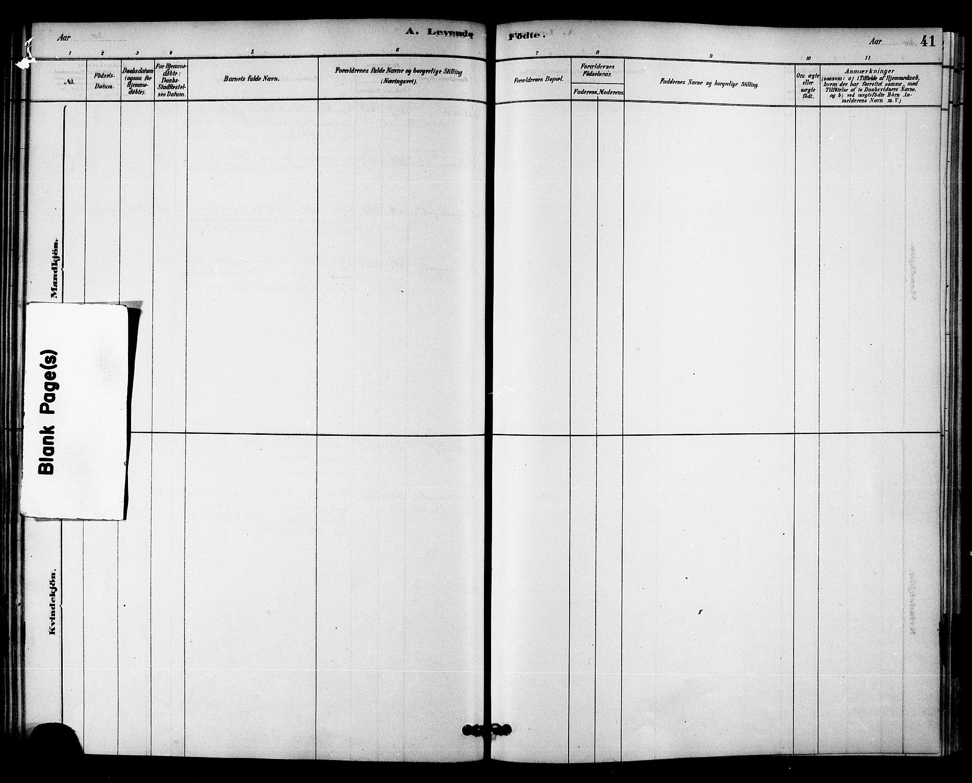 SAT, Ministerialprotokoller, klokkerbøker og fødselsregistre - Nord-Trøndelag, 745/L0429: Ministerialbok nr. 745A01, 1878-1894, s. 41