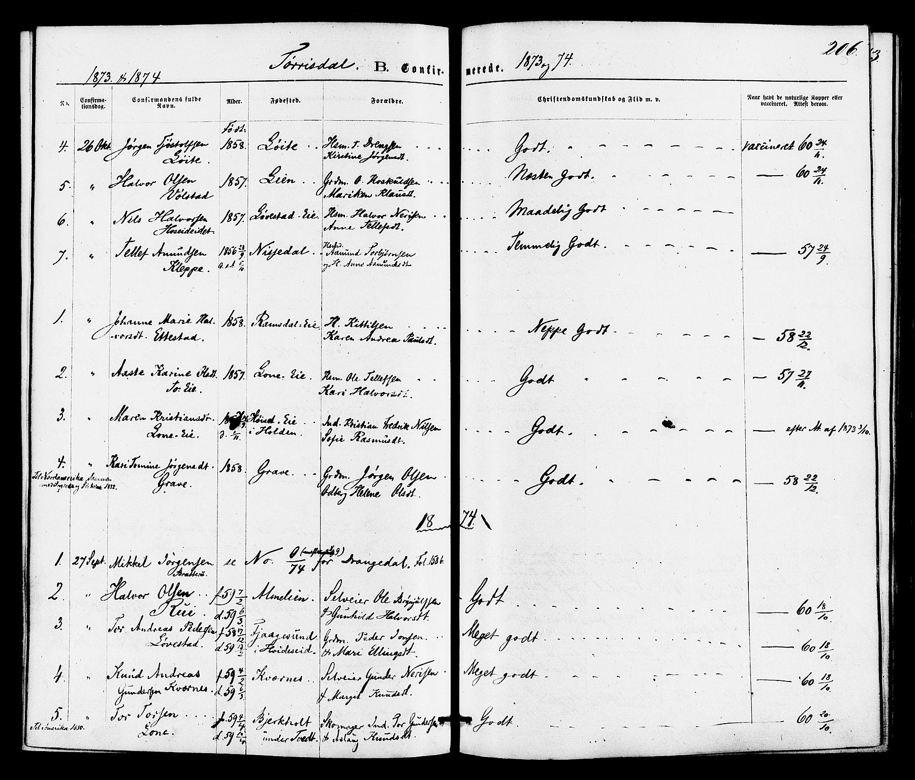 SAKO, Drangedal kirkebøker, F/Fa/L0009: Ministerialbok nr. 9 /2, 1872-1884, s. 206
