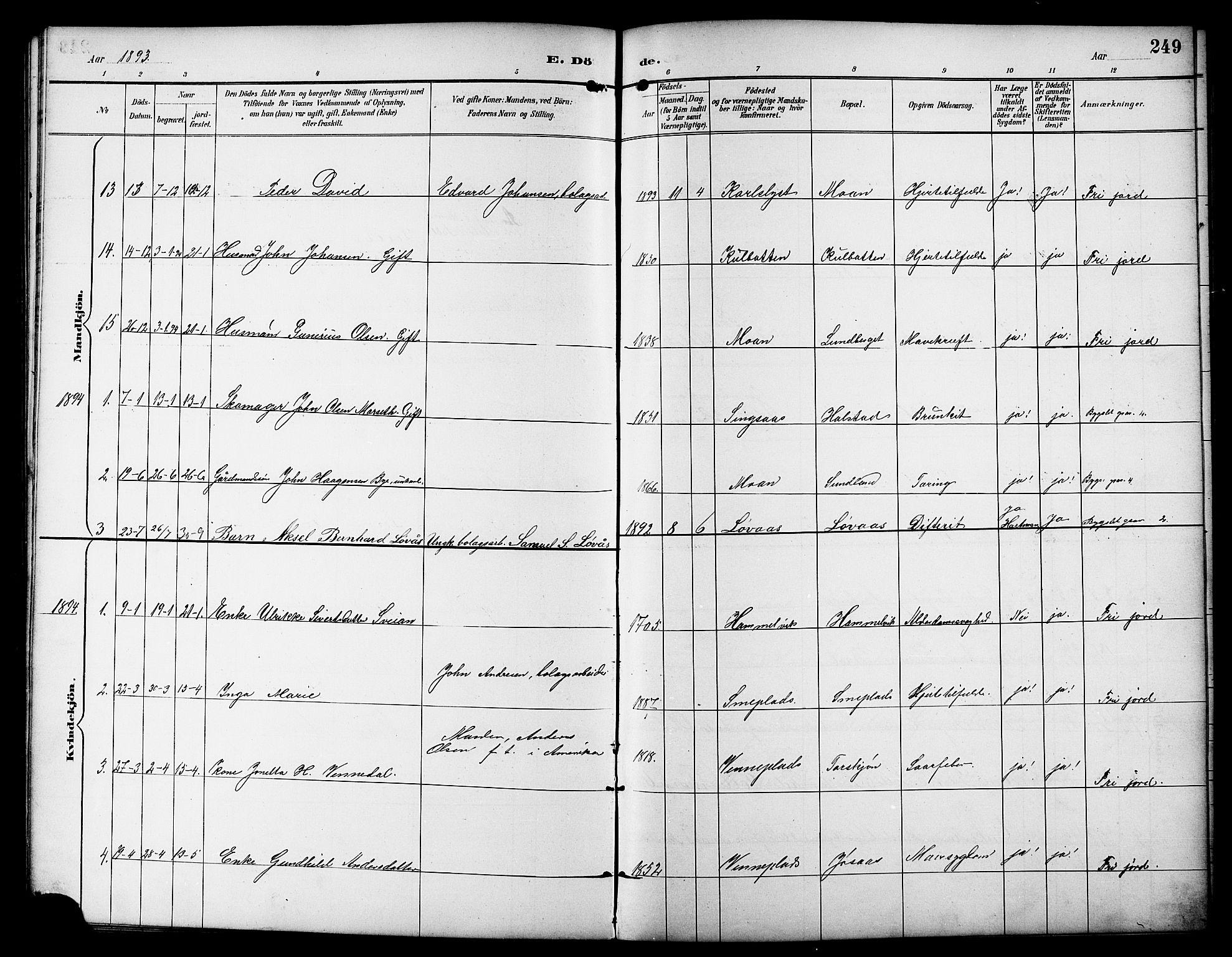 SAT, Ministerialprotokoller, klokkerbøker og fødselsregistre - Sør-Trøndelag, 617/L0431: Klokkerbok nr. 617C01, 1889-1910, s. 249