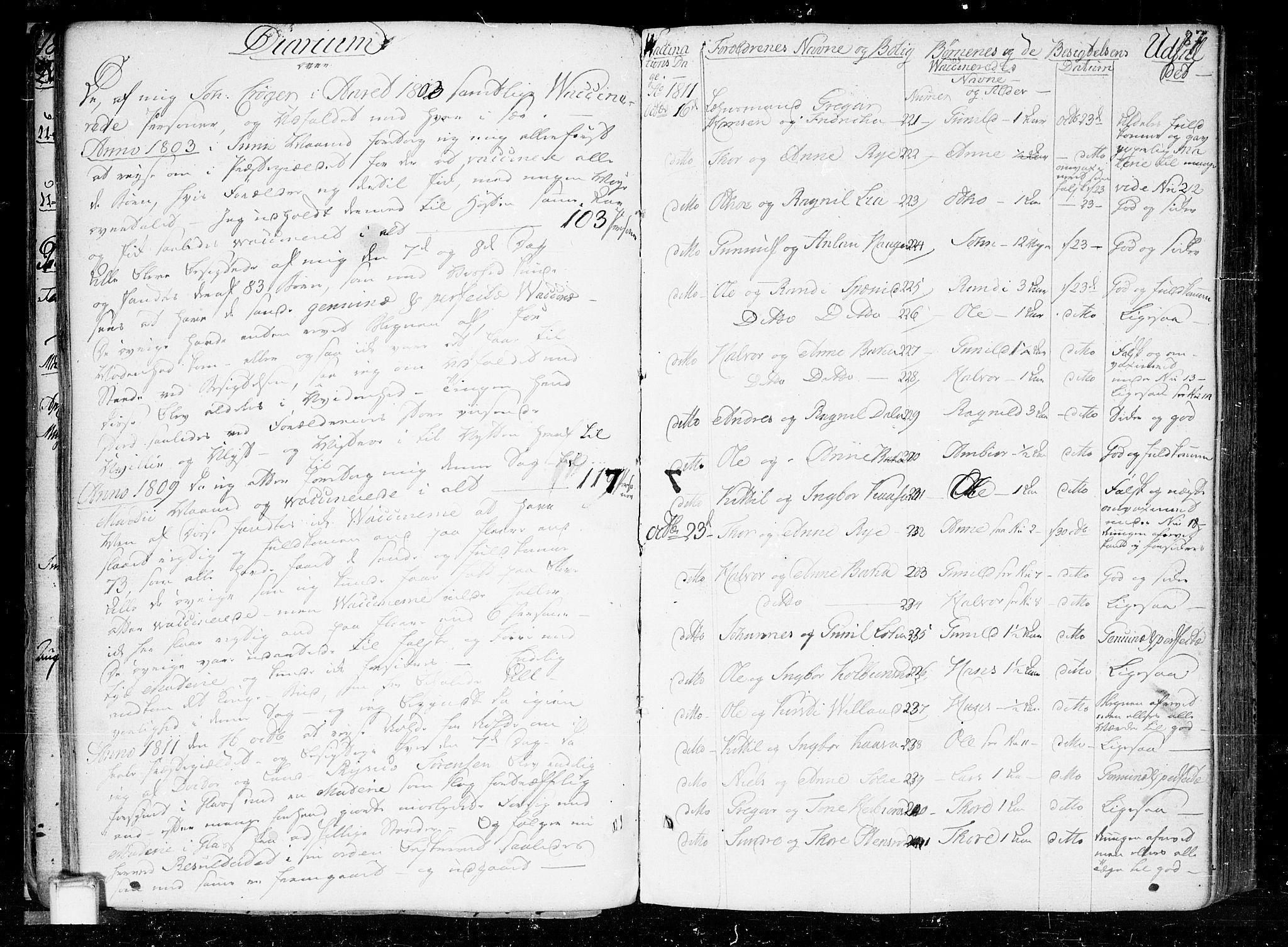 SAKO, Heddal kirkebøker, F/Fa/L0004: Ministerialbok nr. I 4, 1784-1814, s. 87