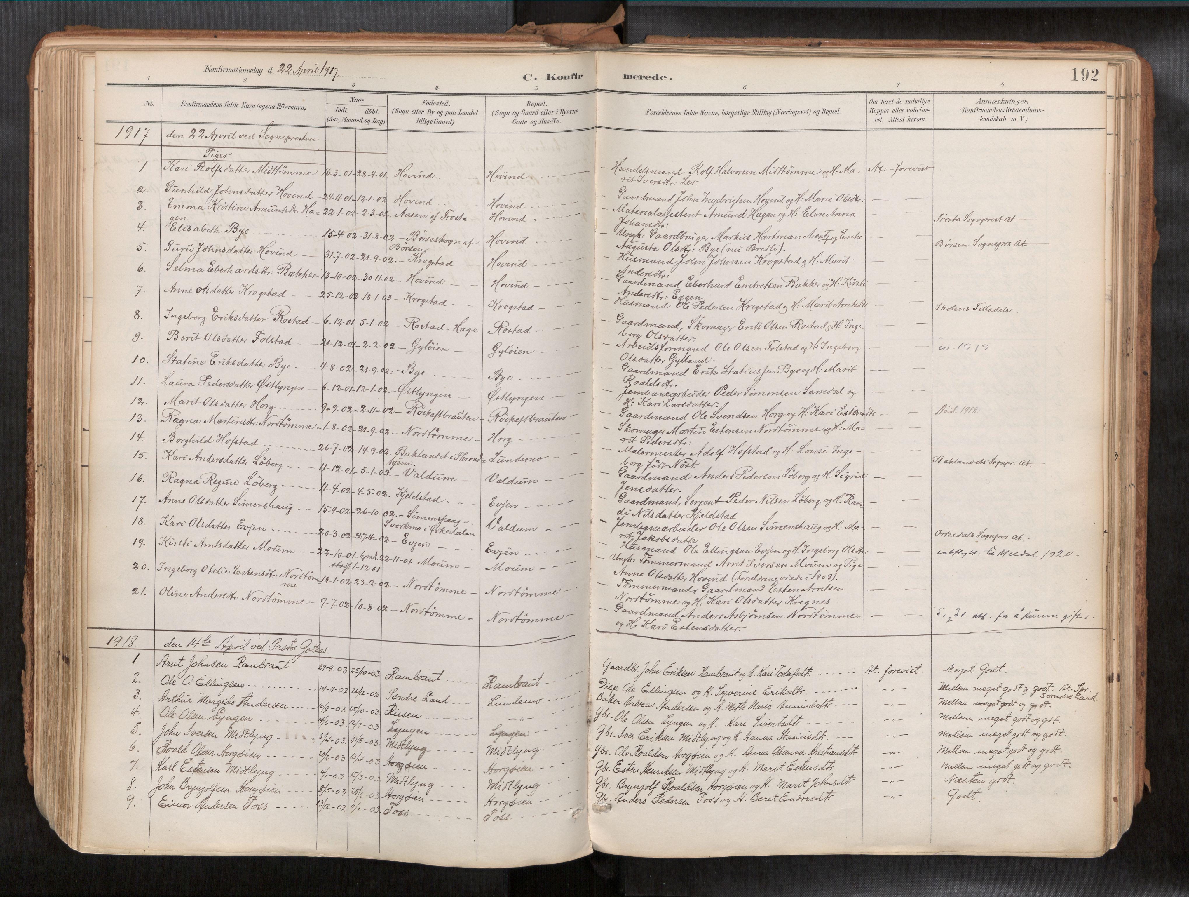 SAT, Ministerialprotokoller, klokkerbøker og fødselsregistre - Sør-Trøndelag, 692/L1105b: Ministerialbok nr. 692A06, 1891-1934, s. 192