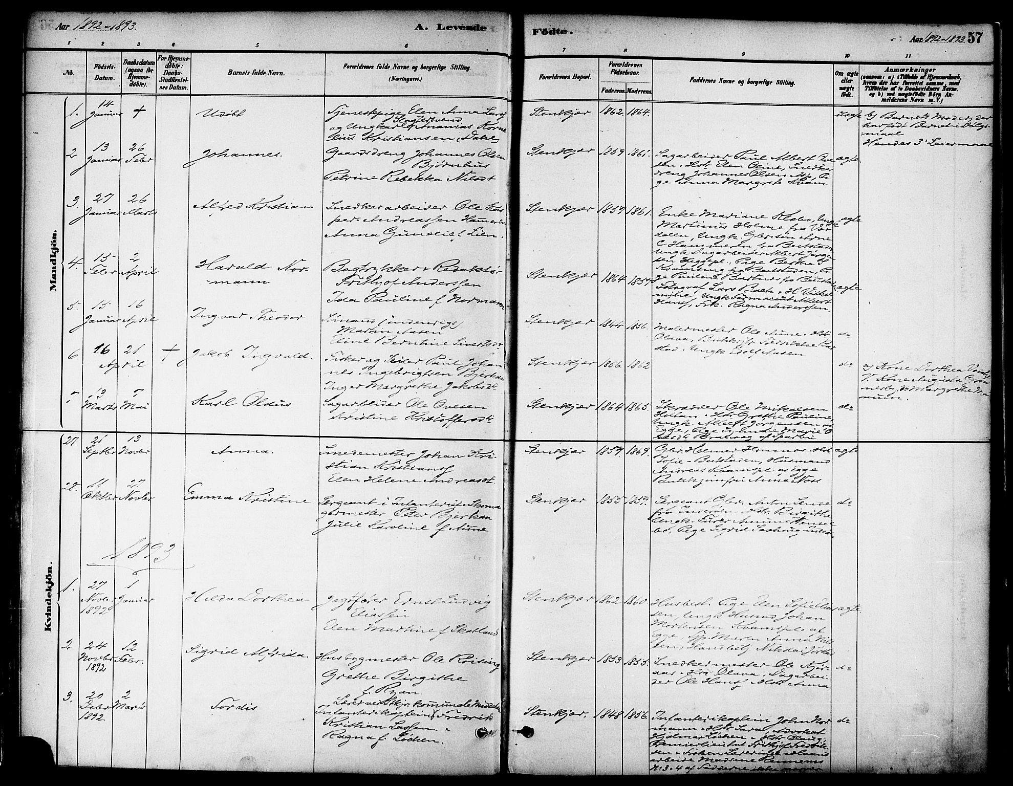 SAT, Ministerialprotokoller, klokkerbøker og fødselsregistre - Nord-Trøndelag, 739/L0371: Ministerialbok nr. 739A03, 1881-1895, s. 57