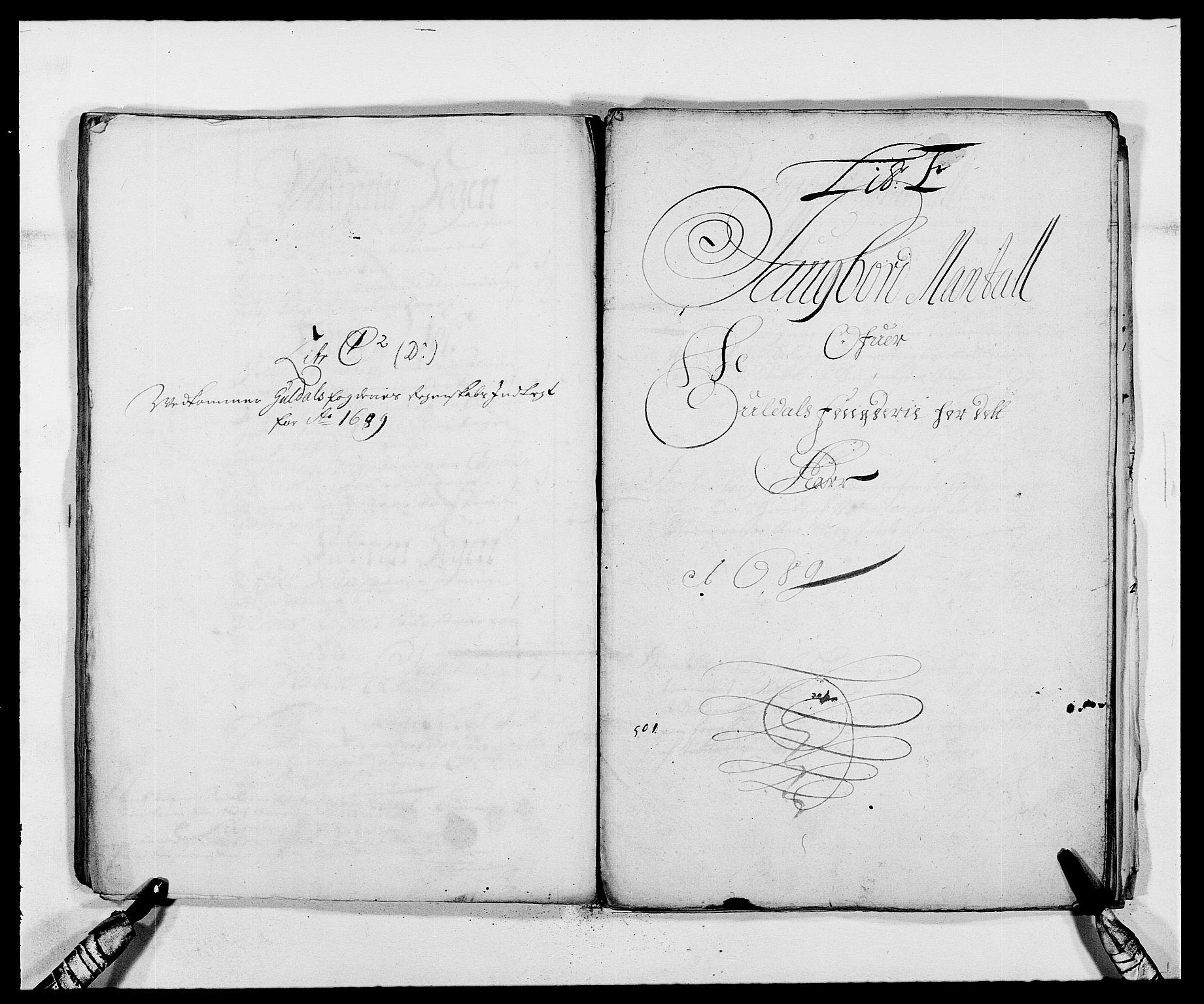 RA, Rentekammeret inntil 1814, Reviderte regnskaper, Fogderegnskap, R59/L3940: Fogderegnskap Gauldal, 1689-1690, s. 67