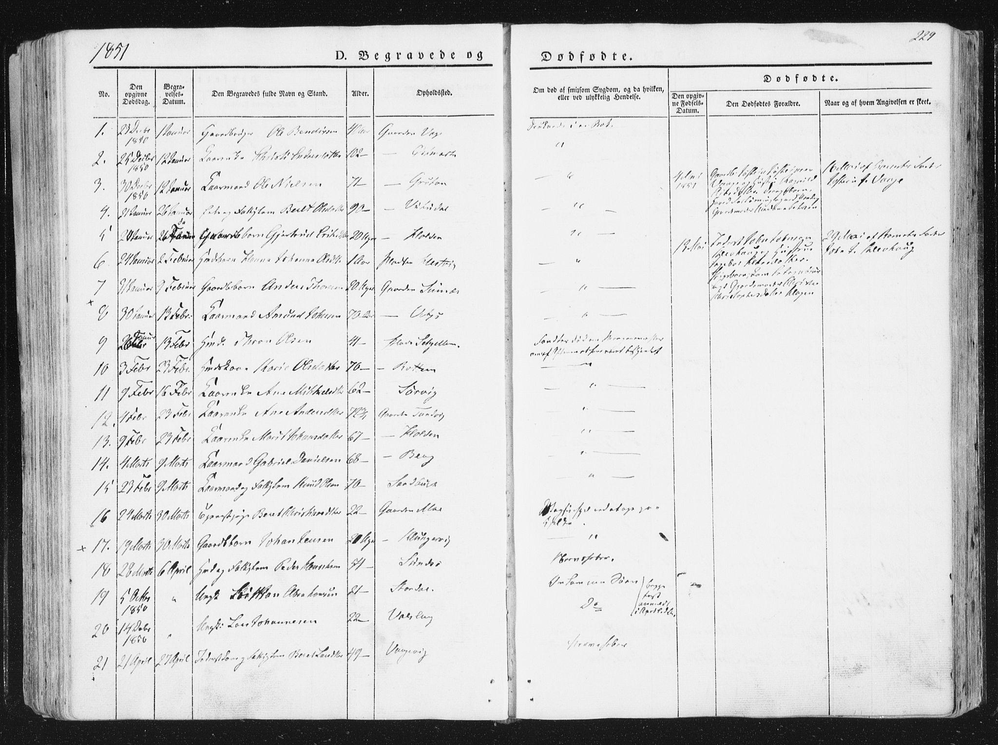 SAT, Ministerialprotokoller, klokkerbøker og fødselsregistre - Sør-Trøndelag, 630/L0493: Ministerialbok nr. 630A06, 1841-1851, s. 229