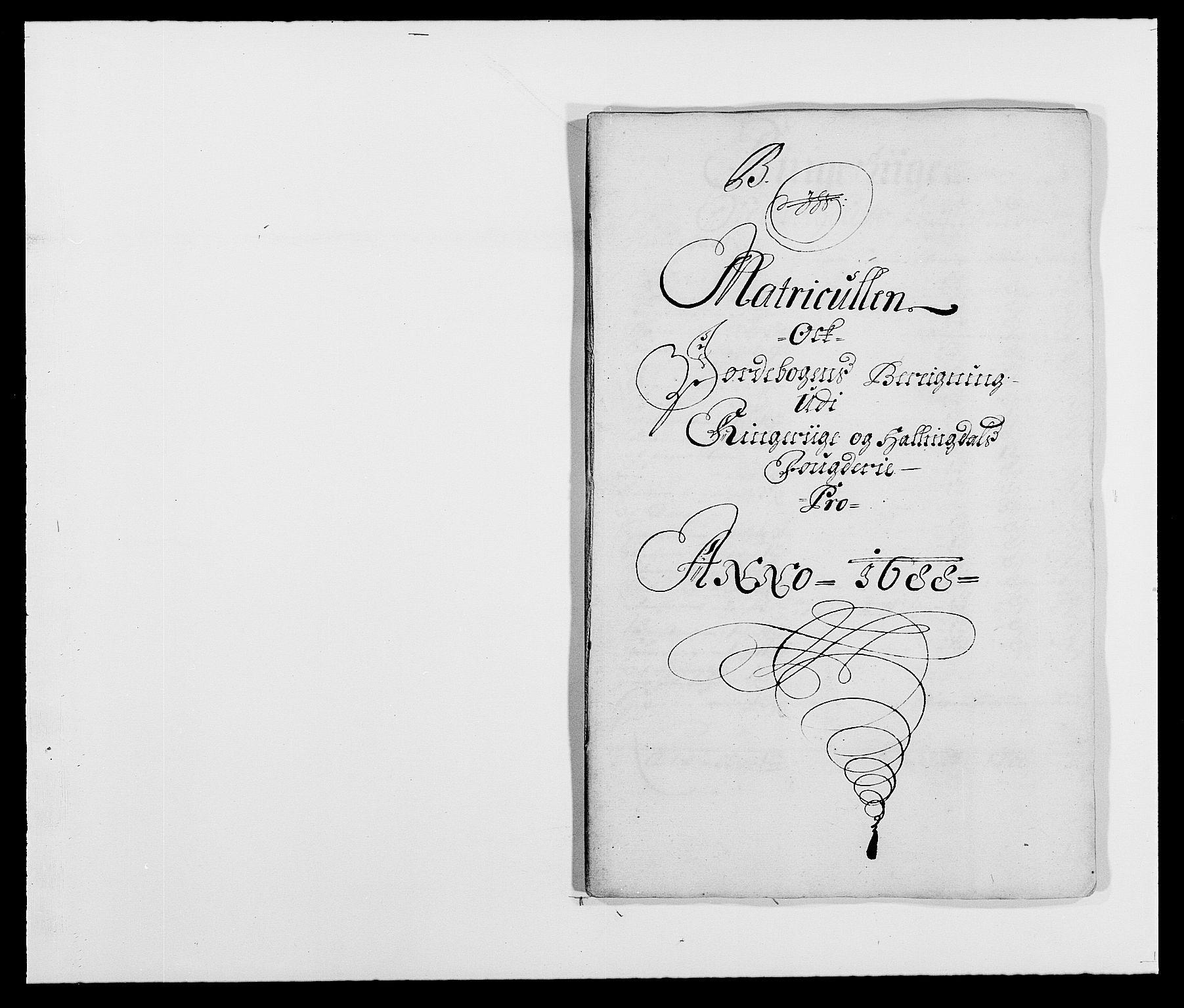 RA, Rentekammeret inntil 1814, Reviderte regnskaper, Fogderegnskap, R21/L1447: Fogderegnskap Ringerike og Hallingdal, 1687-1689, s. 134