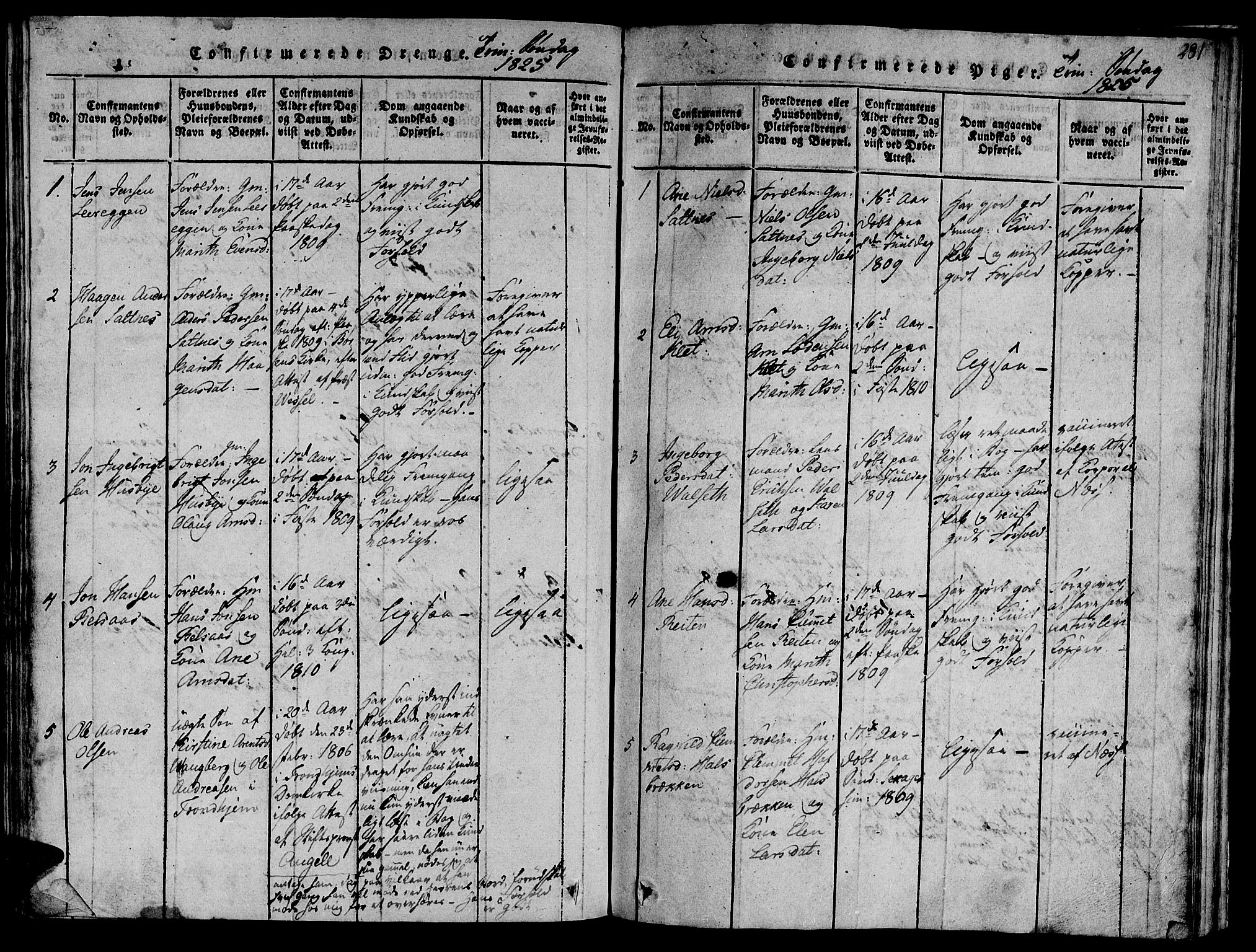 SAT, Ministerialprotokoller, klokkerbøker og fødselsregistre - Sør-Trøndelag, 612/L0373: Ministerialbok nr. 612A06 /2, 1816-1828, s. 281
