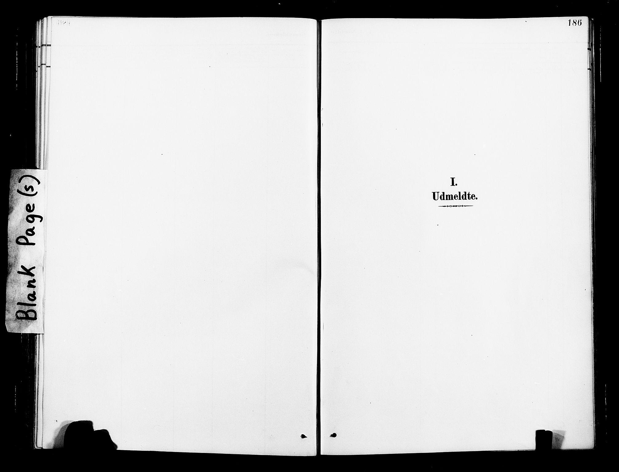 SAT, Ministerialprotokoller, klokkerbøker og fødselsregistre - Nord-Trøndelag, 713/L0121: Ministerialbok nr. 713A10, 1888-1898, s. 186