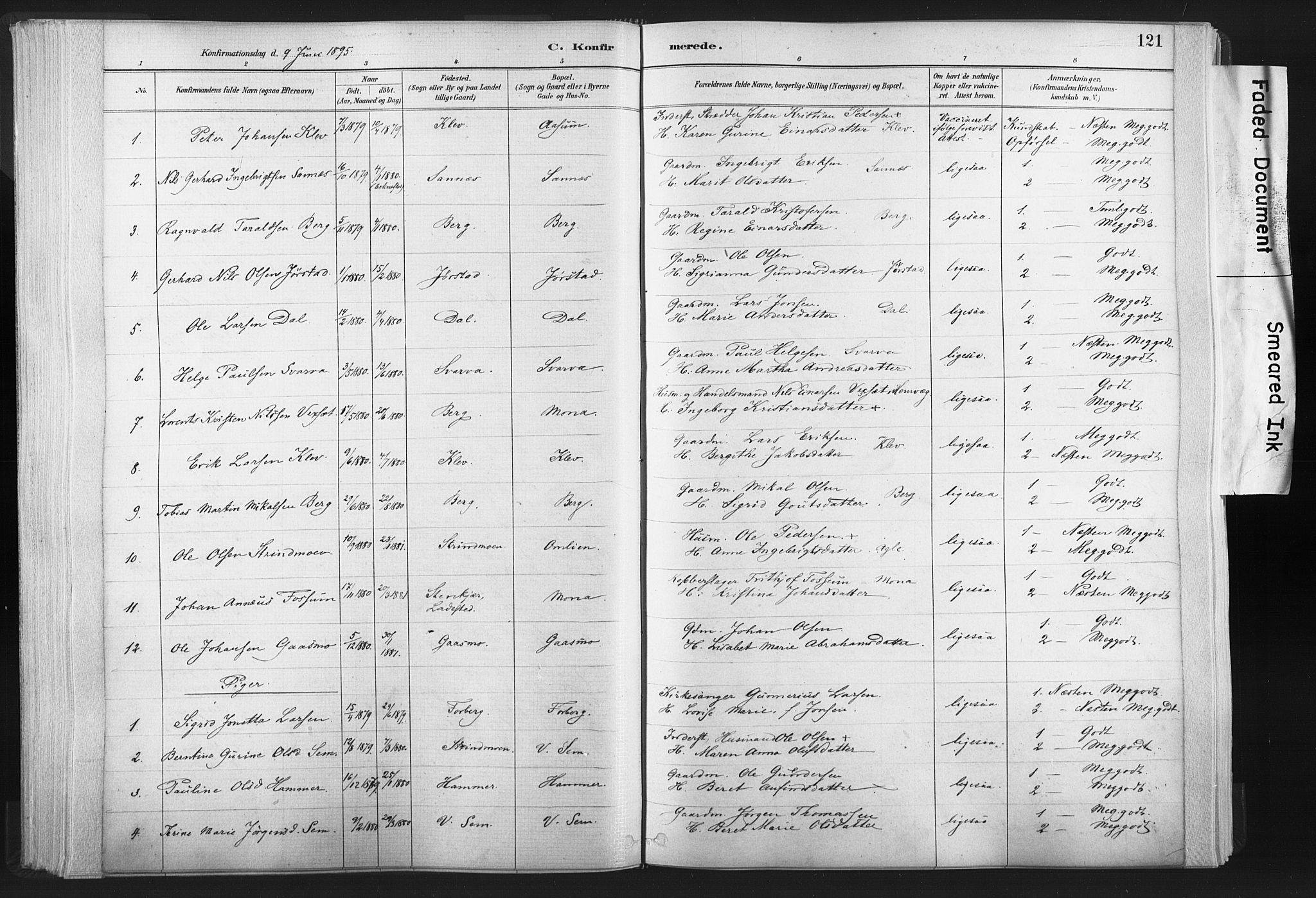 SAT, Ministerialprotokoller, klokkerbøker og fødselsregistre - Nord-Trøndelag, 749/L0474: Ministerialbok nr. 749A08, 1887-1903, s. 121