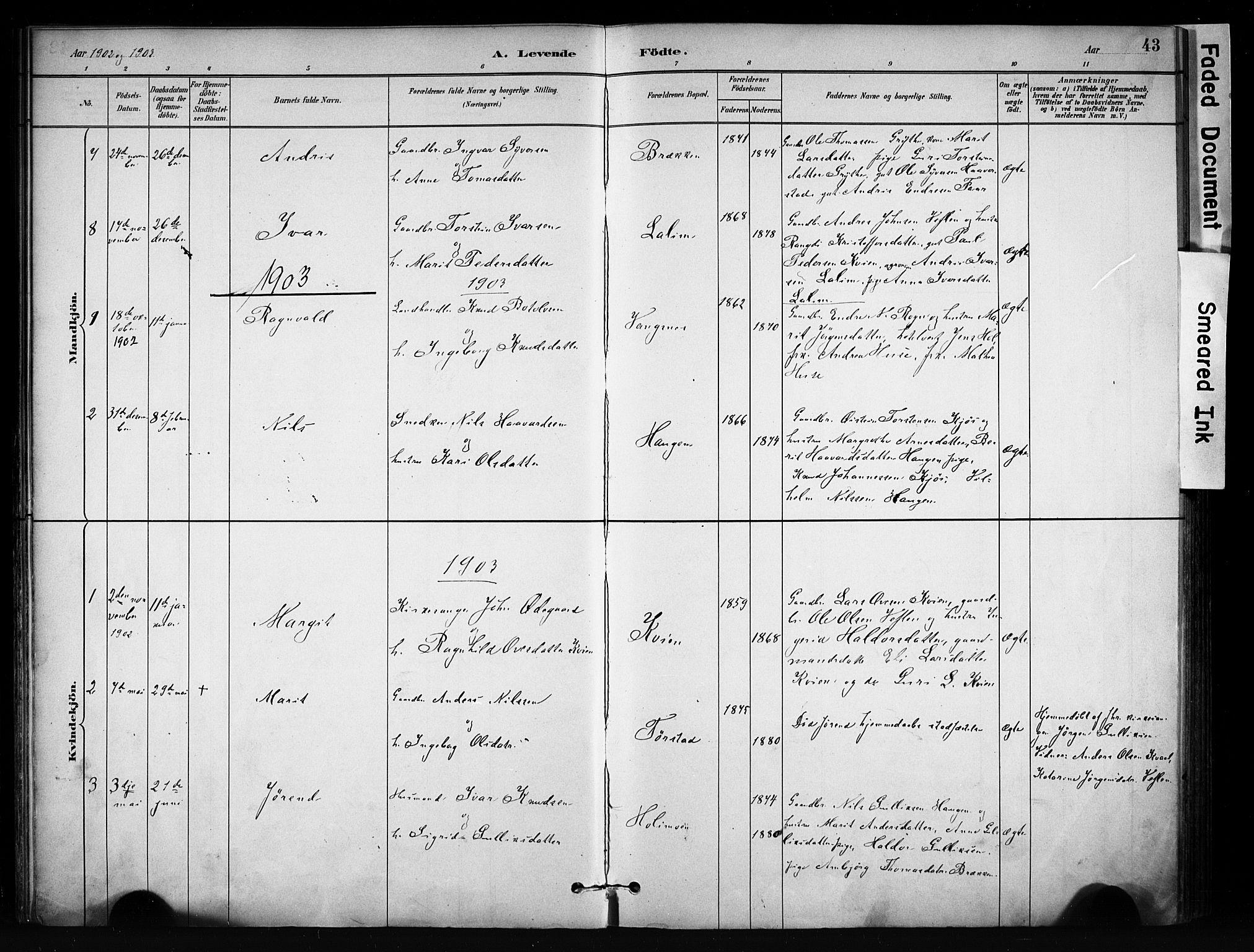SAH, Vang prestekontor, Valdres, Ministerialbok nr. 9, 1882-1914, s. 43