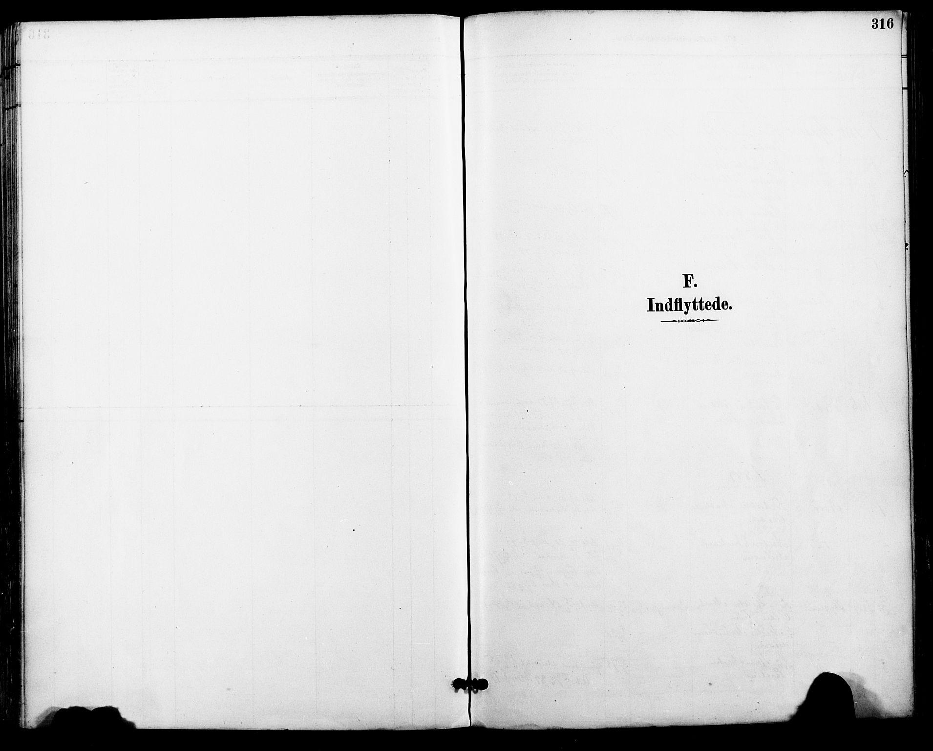 SAT, Ministerialprotokoller, klokkerbøker og fødselsregistre - Nordland, 801/L0010: Ministerialbok nr. 801A10, 1888-1899, s. 316