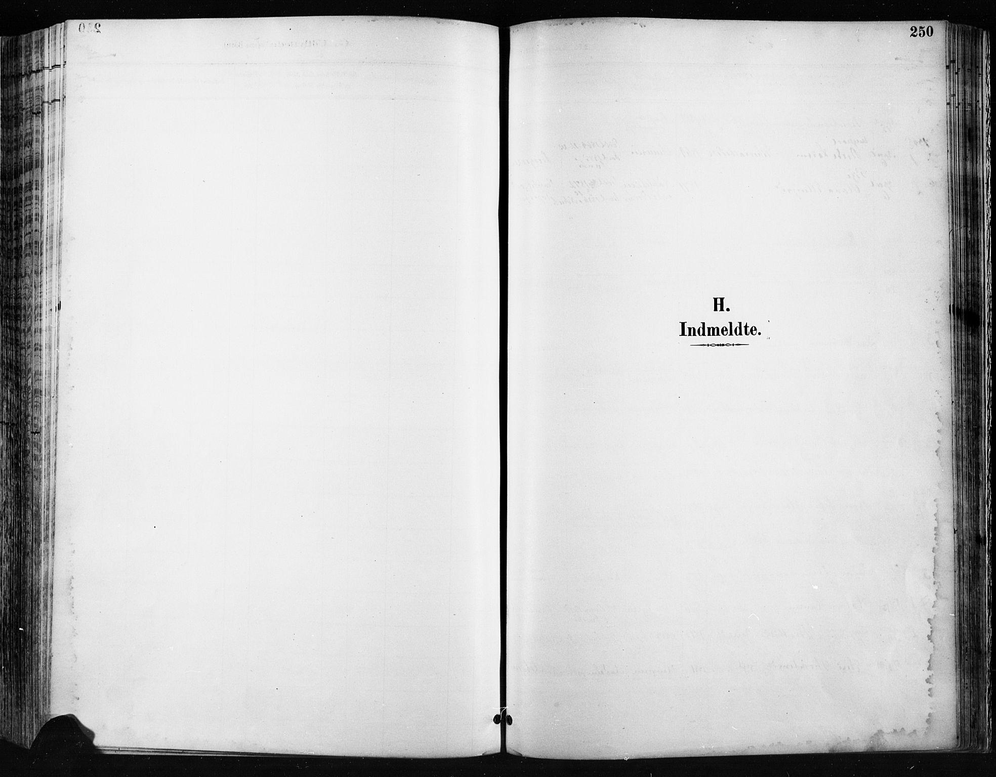 SAH, Jevnaker prestekontor, Ministerialbok nr. 9, 1891-1901, s. 250