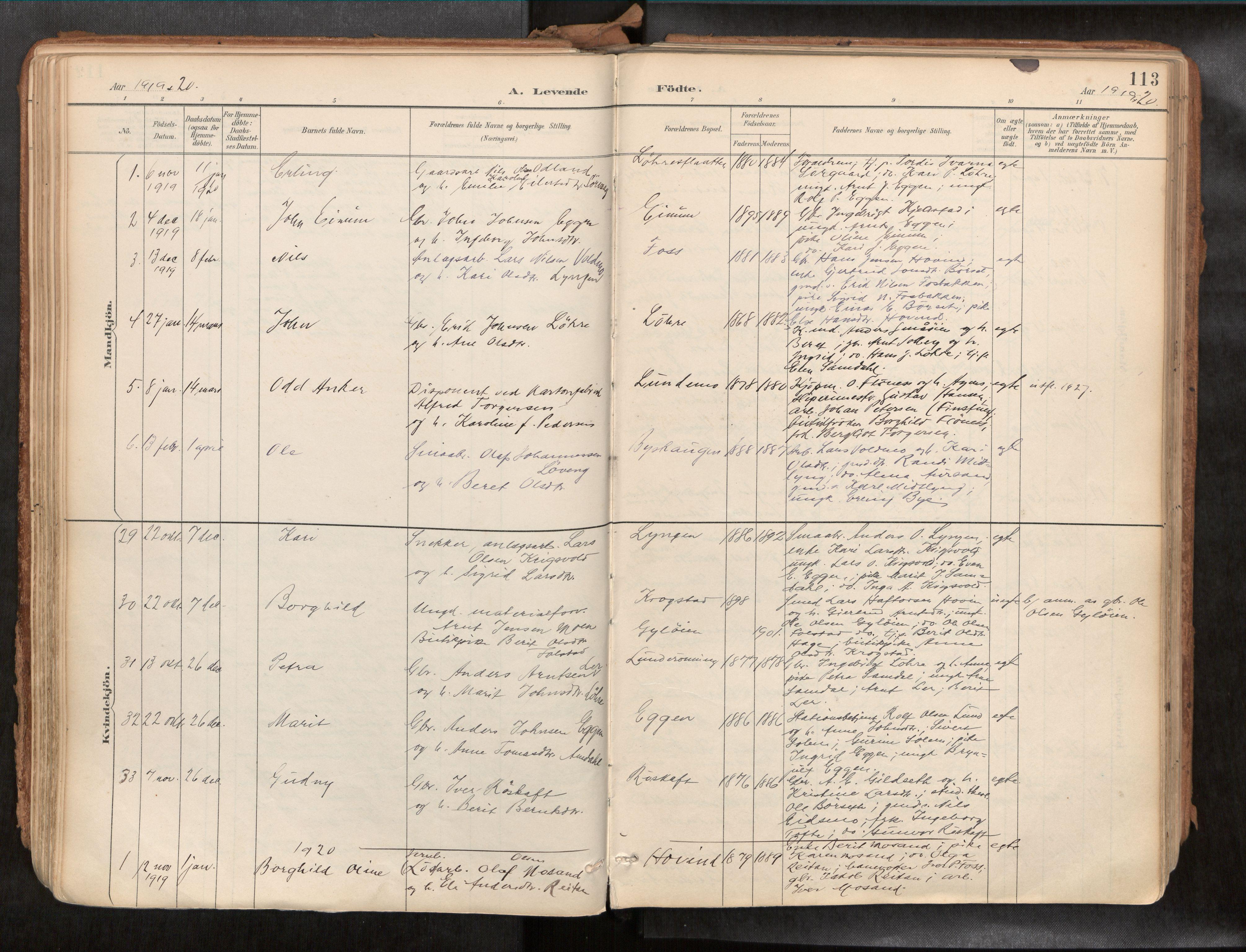 SAT, Ministerialprotokoller, klokkerbøker og fødselsregistre - Sør-Trøndelag, 692/L1105b: Ministerialbok nr. 692A06, 1891-1934, s. 113