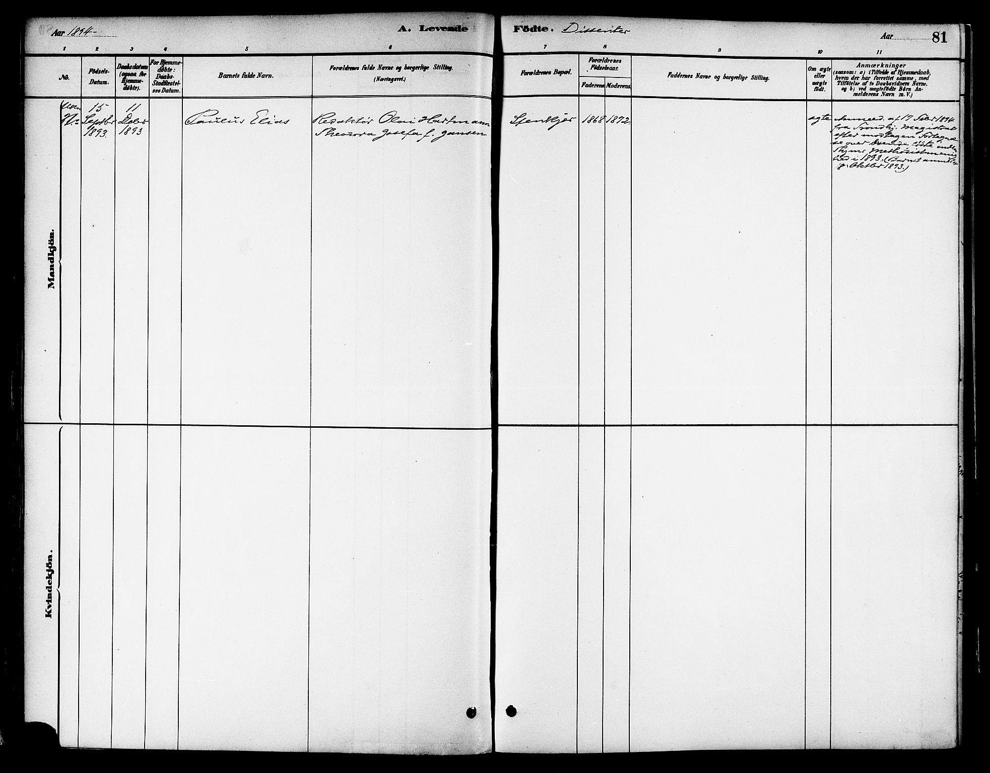 SAT, Ministerialprotokoller, klokkerbøker og fødselsregistre - Nord-Trøndelag, 739/L0371: Ministerialbok nr. 739A03, 1881-1895, s. 81