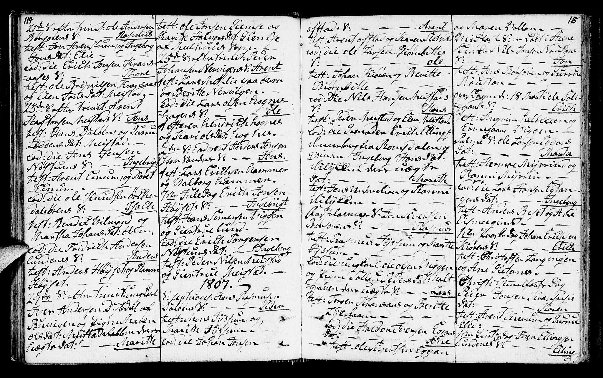 SAT, Ministerialprotokoller, klokkerbøker og fødselsregistre - Sør-Trøndelag, 665/L0769: Ministerialbok nr. 665A04, 1803-1816, s. 114-115