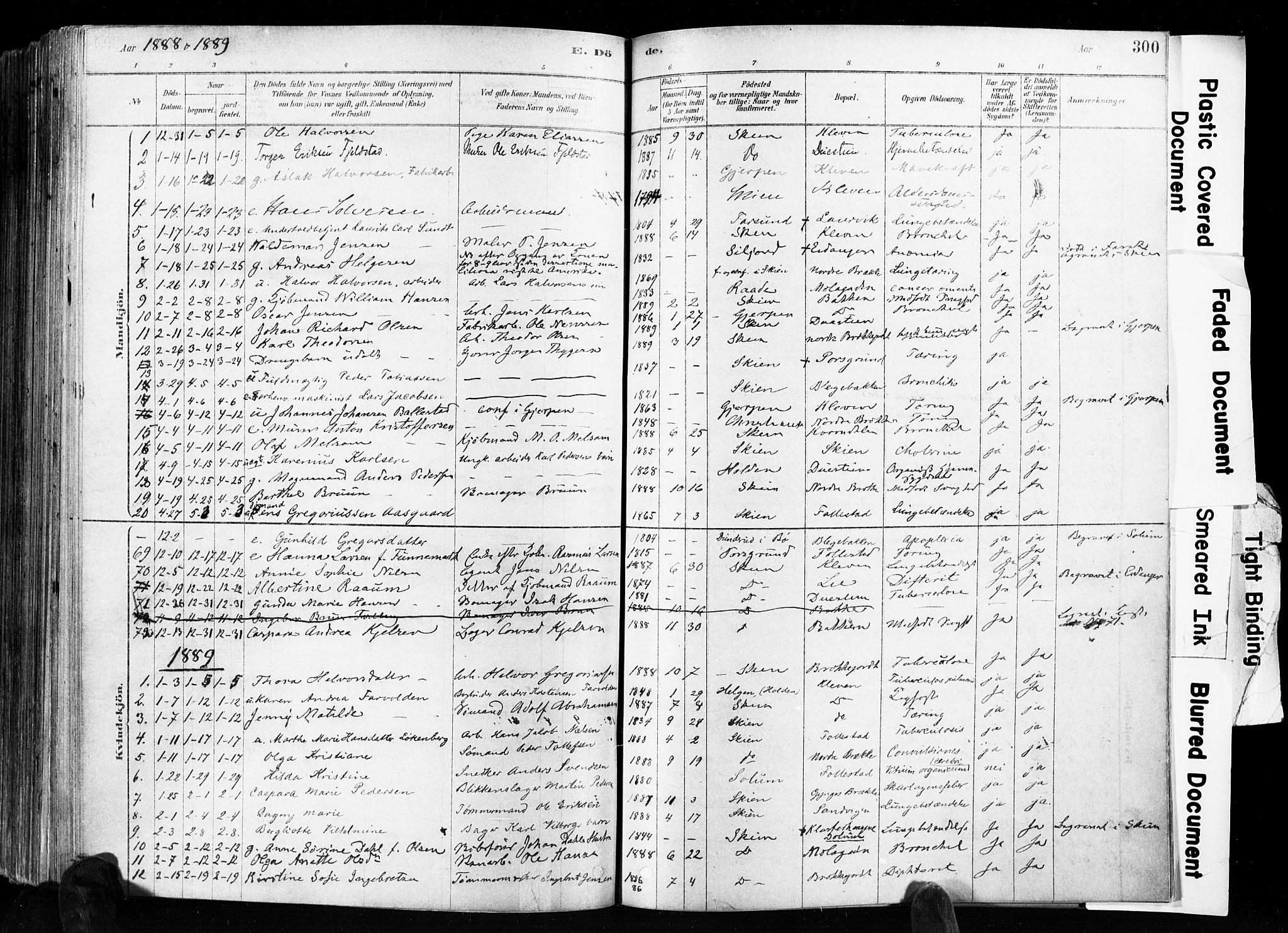 SAKO, Skien kirkebøker, F/Fa/L0009: Ministerialbok nr. 9, 1878-1890, s. 300